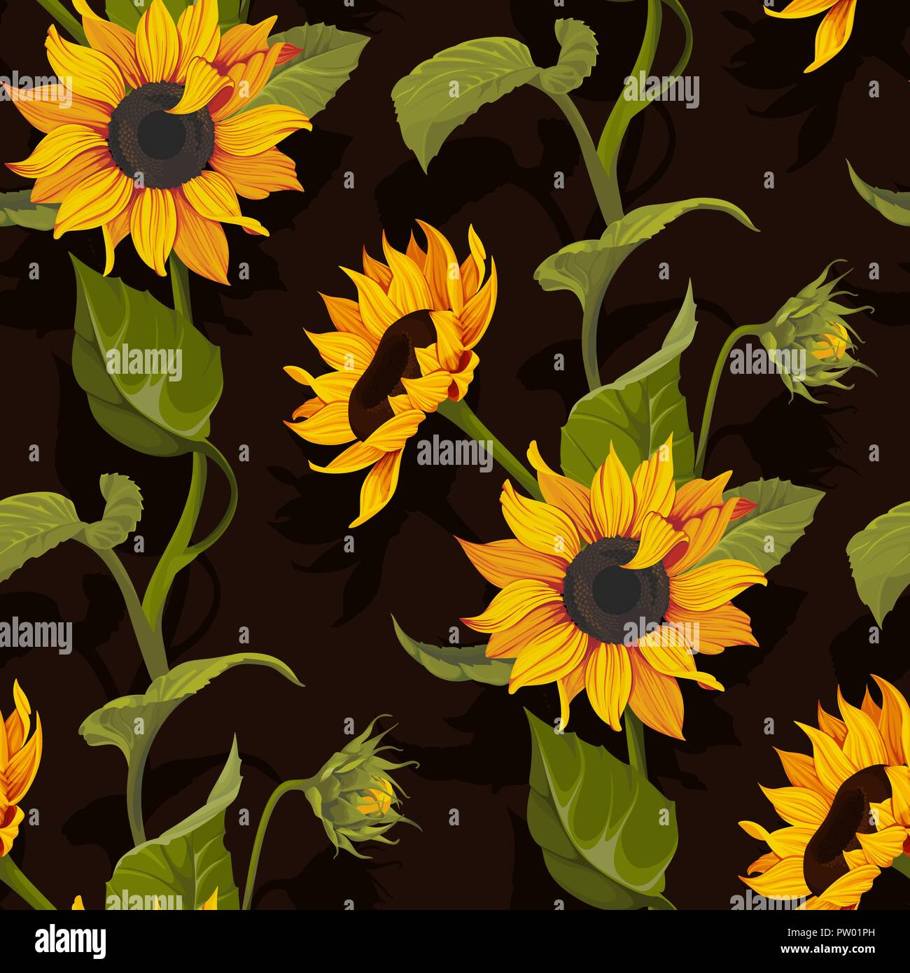 sunflower vector seamless pattern floral texture on black background PW01PH