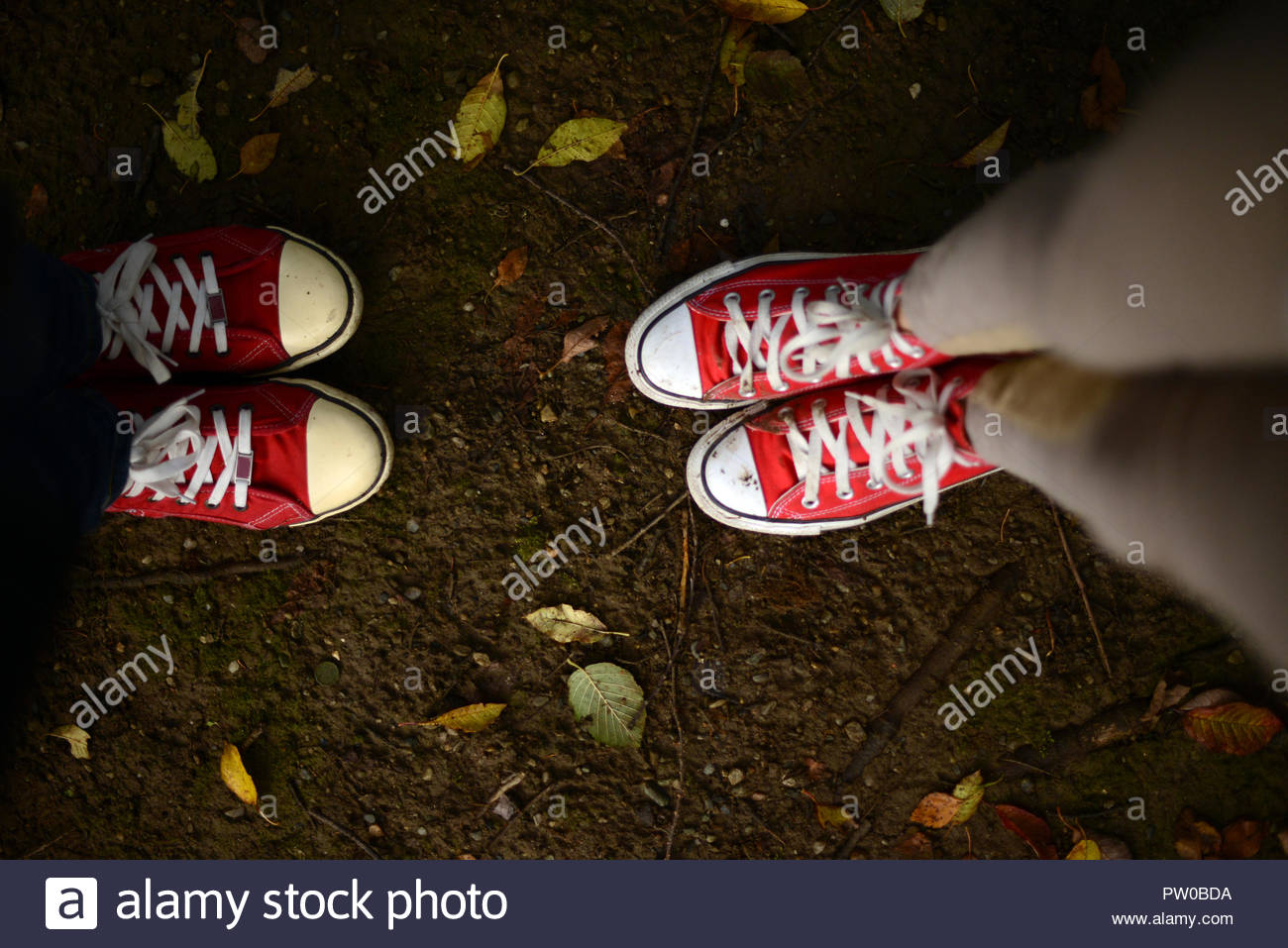 7ba0333d8 two girls wearing red canvas shoes standing on a ground with fallen autumn  leaves - Stock