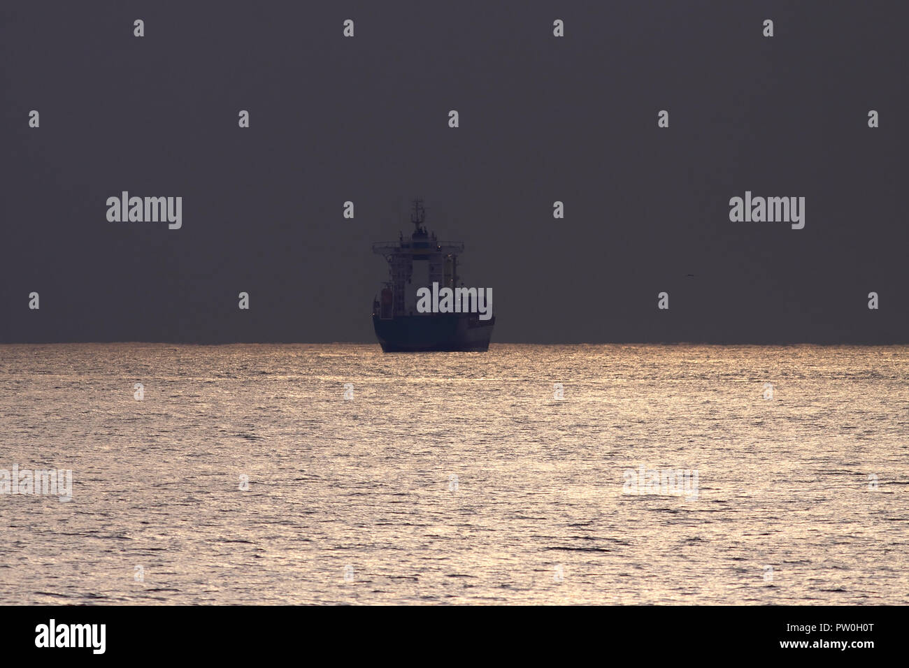 Commercial ship crossing the Portuguese coast at dusk - Stock Image