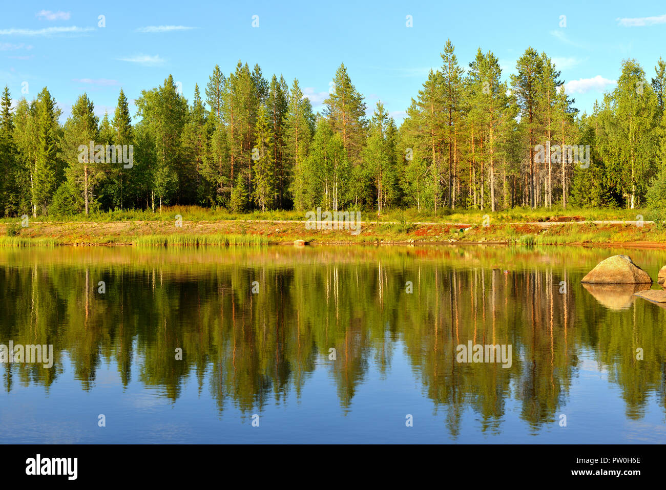 Summer landscape in Finnish Lapland.  Reflection in forest lake - Stock Image