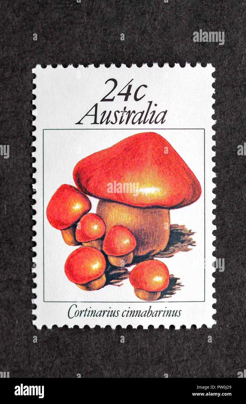 Australian Mint Stamp Depicting Mushroom Cortinarius Cinnabarinus