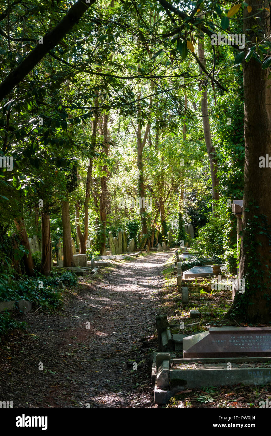 A path through Highgate Cemetery with graves among the trees. - Stock Image
