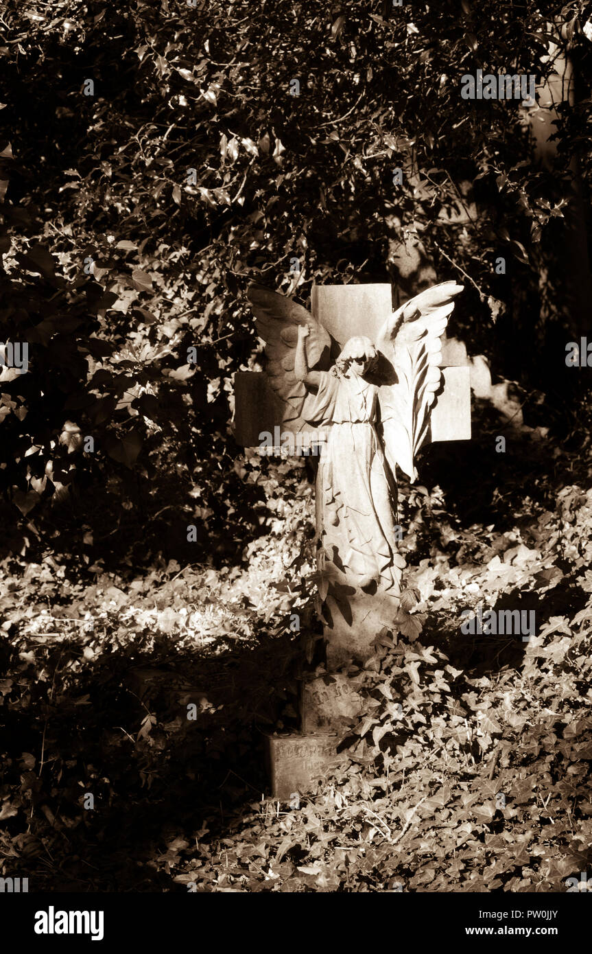Sepia toned stone angel in Highgate Cemetery, London. - Stock Image