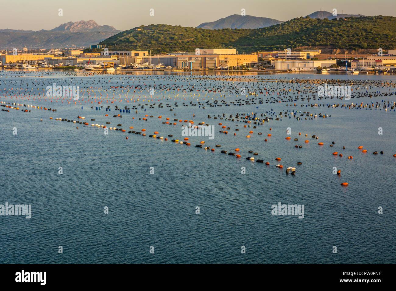 Olbia in Sardinia. Landscape around Olbia, view from cruise ship arriving into the Olbia harbor in Sardinia island, morning scene - Stock Image