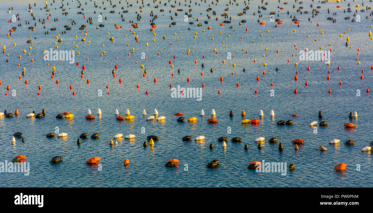 Olbia in Sardinia. Colored buoys in bleu sea in harbour of Olbia, Sardinia island in Italy. - Stock Image