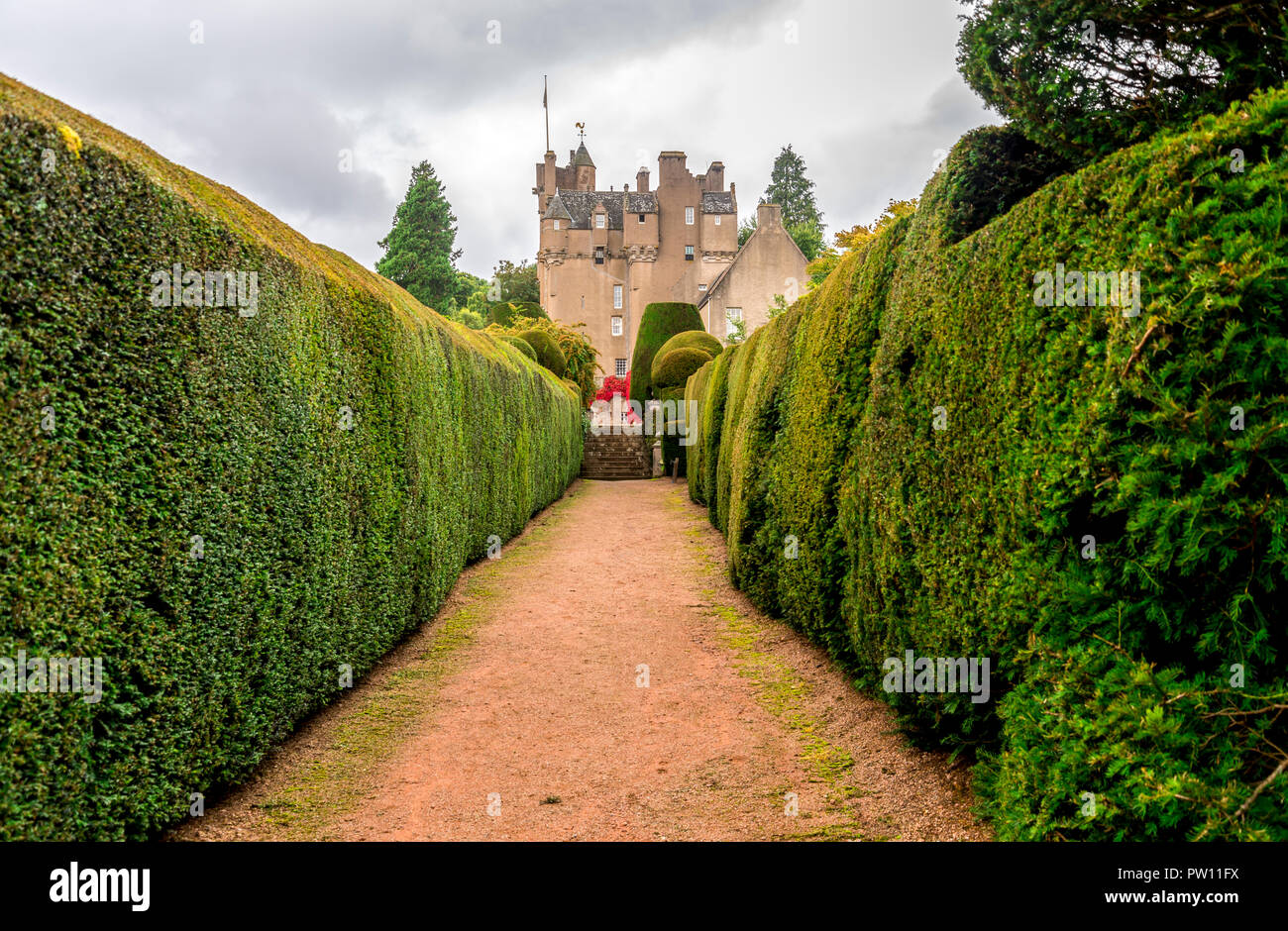 A walkpath thru the gardens to Crathes Castle with green hedges on both sides, Aberdeenshire, Scotland Stock Photo