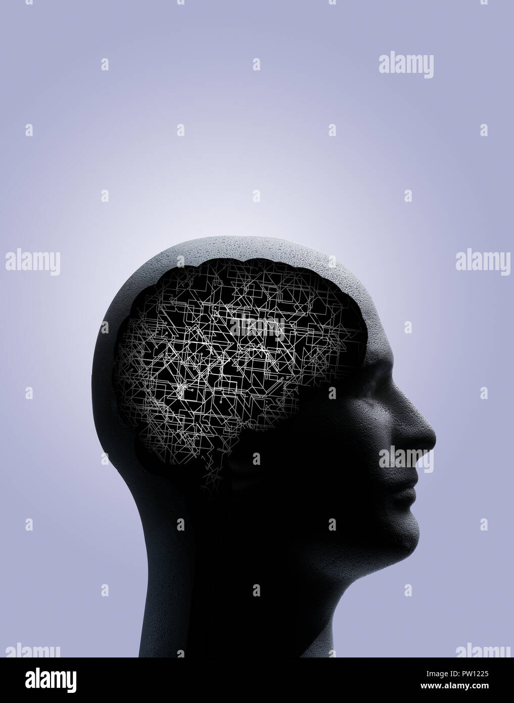 Concept Profile of a Man with Outline of Brain and Stem, showing a complex structure, texture, Forward Thinking, Ideas - Stock Image