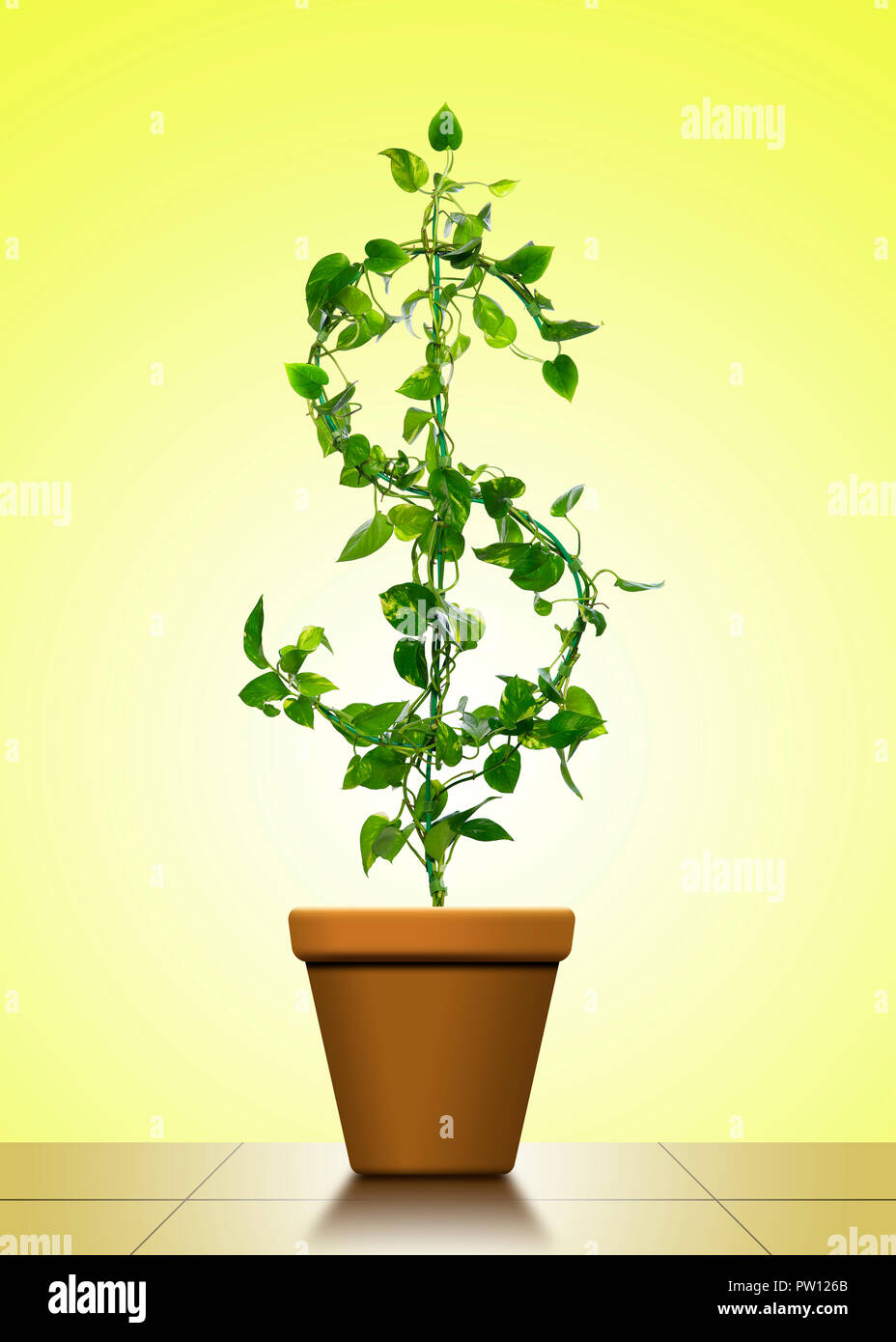 Concept A $ Dollar Sign shaped House Plant of Golden Pothos, Money Growth, Portfolio Management, Wealth, Care, Taking Care Business - Stock Image