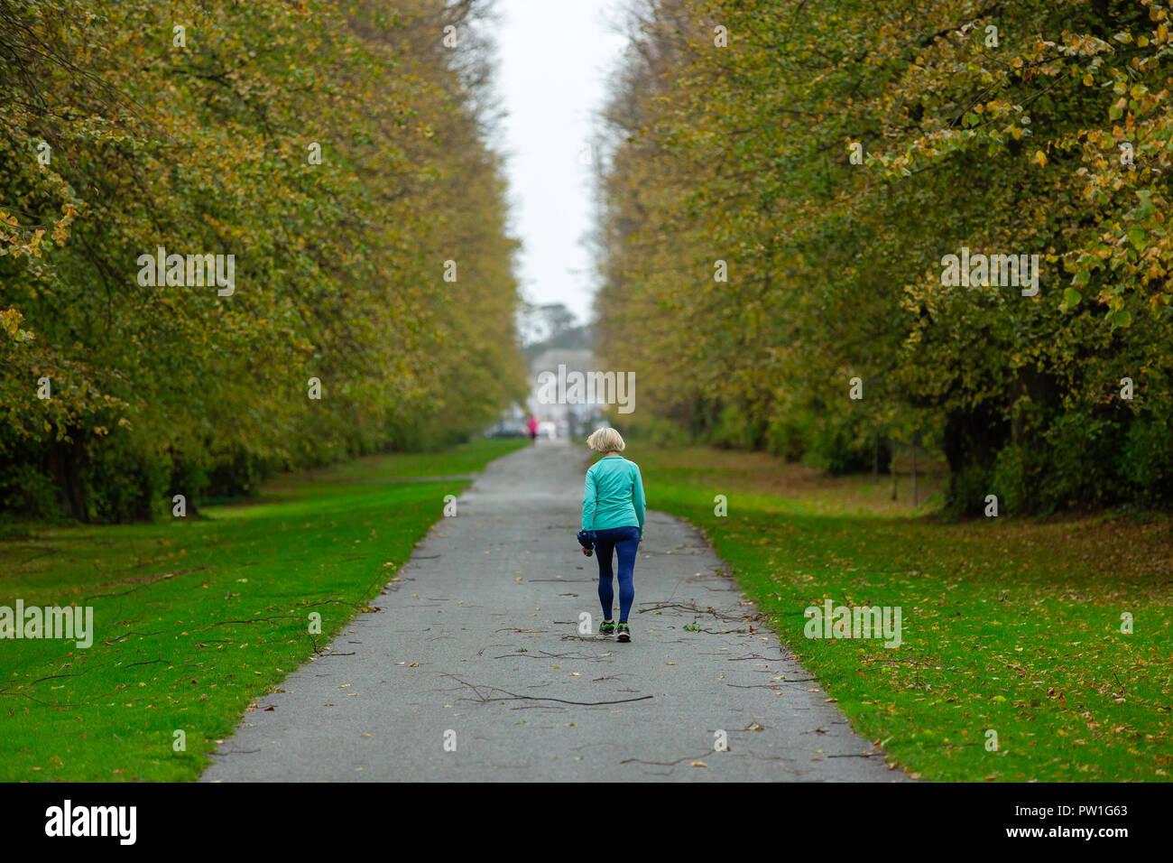 Kildare County Council - Burial Grounds - uselesspenguin.co.uk