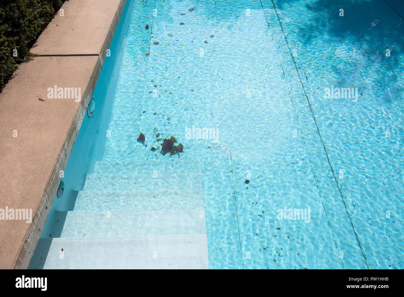 Dirty swimming pool which need to be cleaned close-up - Stock Image
