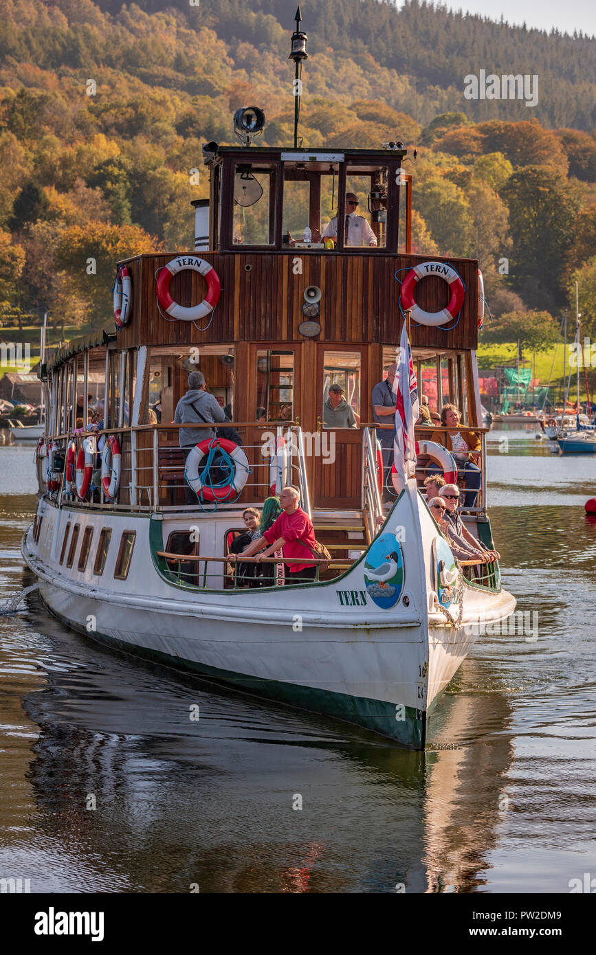 Lake Windermere steamer the Tern at Lakeside. Lake District North West England. - Stock Image
