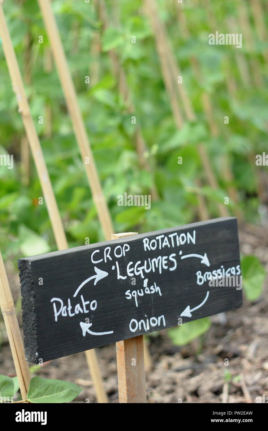 Crop rotation sign showing sequential growing to help deter crop specific pests and plant disease, English organic allotment garden, UK - Stock Image