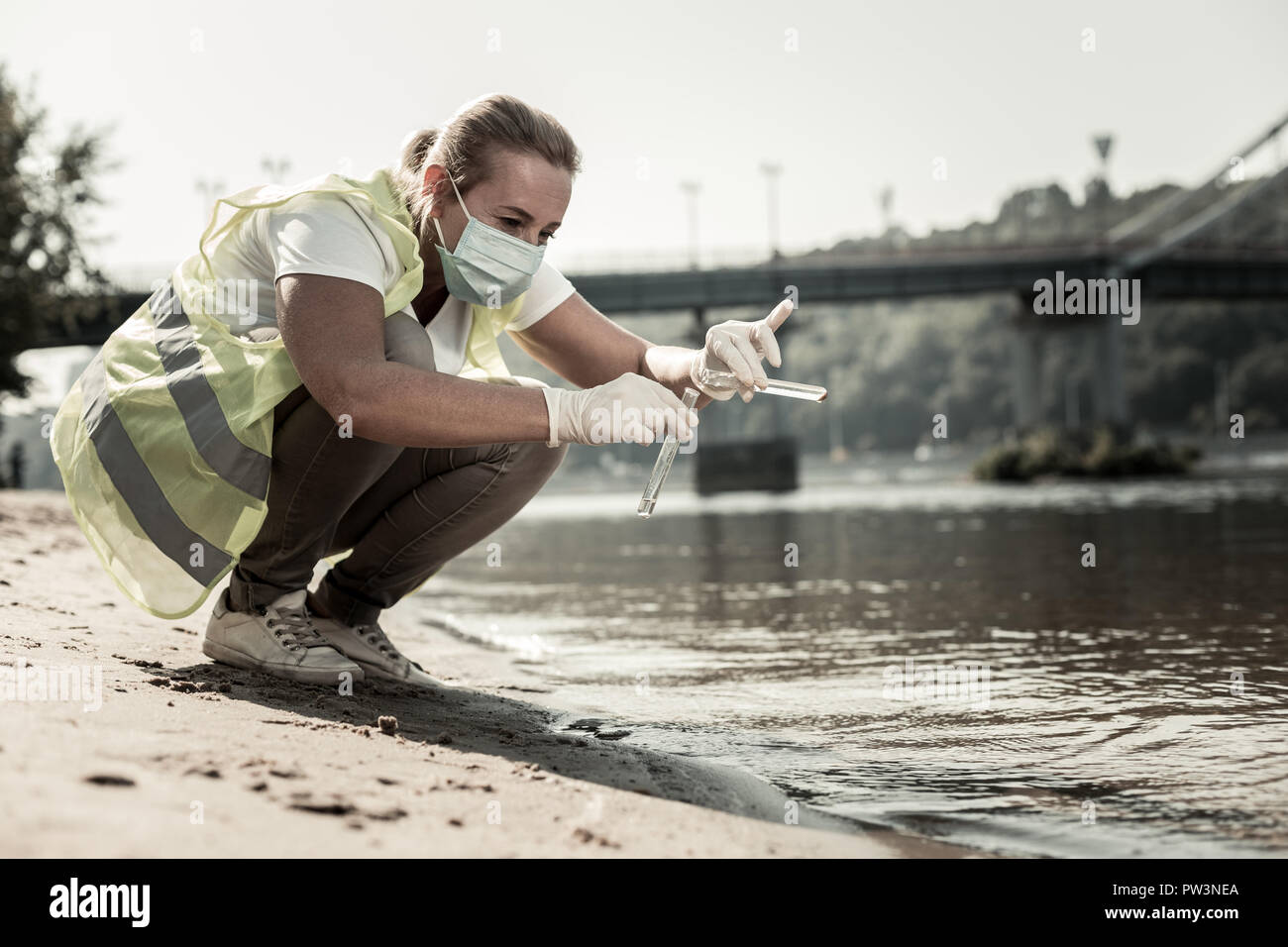 Sanitary inspector holding test tubes while checking water contamination level - Stock Image