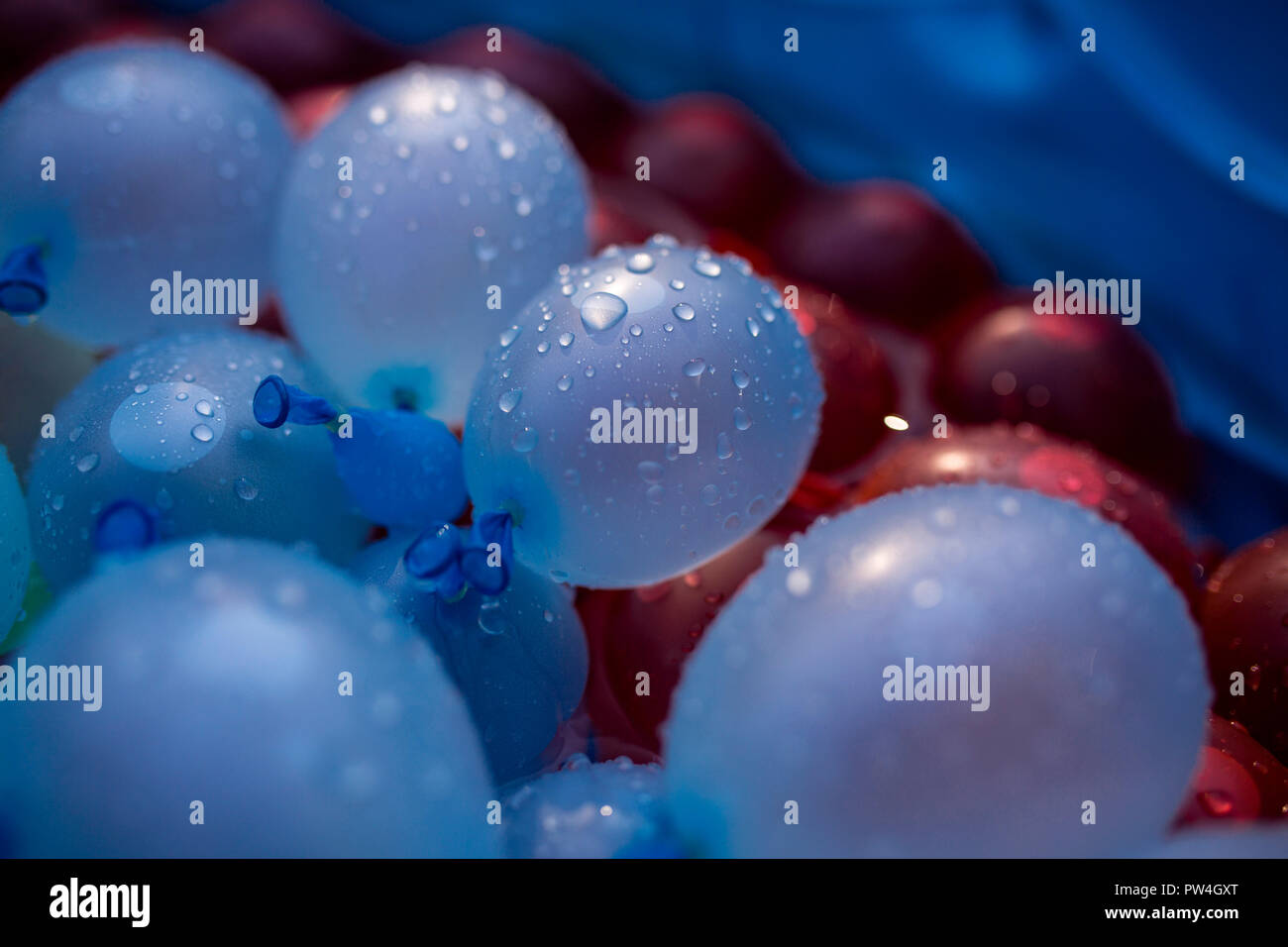 Close-up of water bombs in bucket - Stock Image