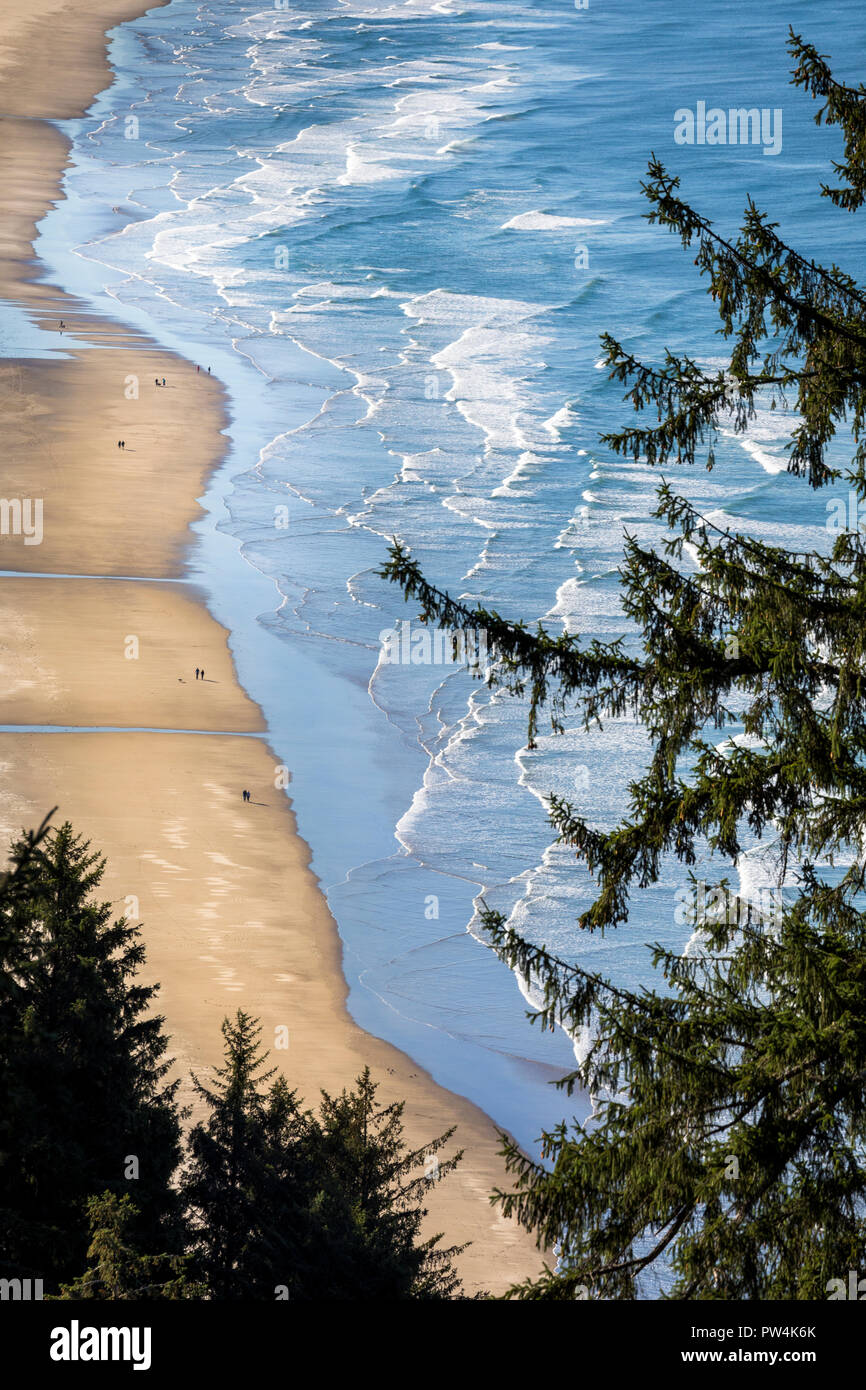 Aerial perspective of the Oregon Coast from highway 101, USA. Stock Photo