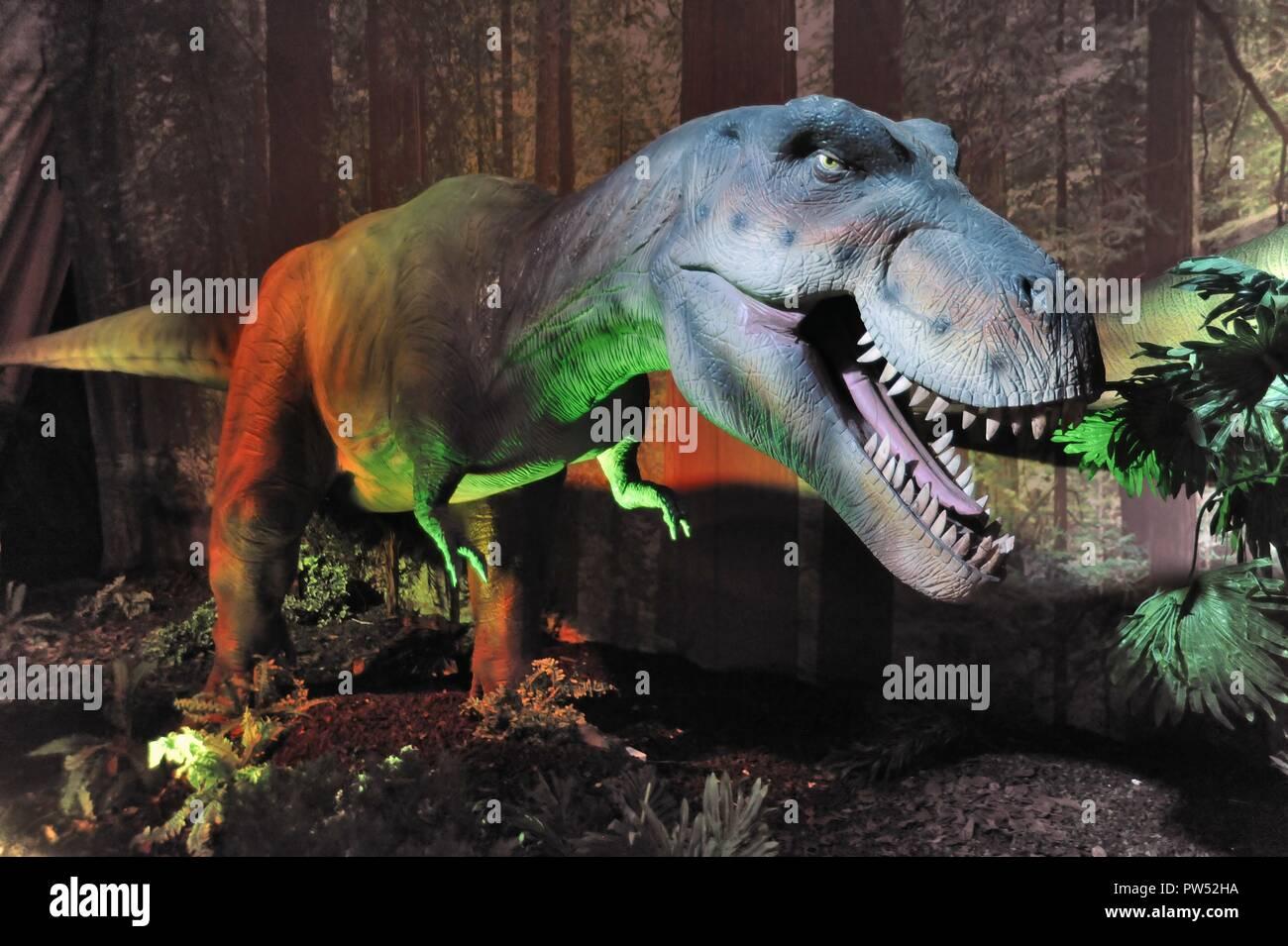 Milan (Italy), exhibition of prehistoric animals reproduced in full size; Tyrannosaurus (Tyrannosaurus rex) - Stock Image