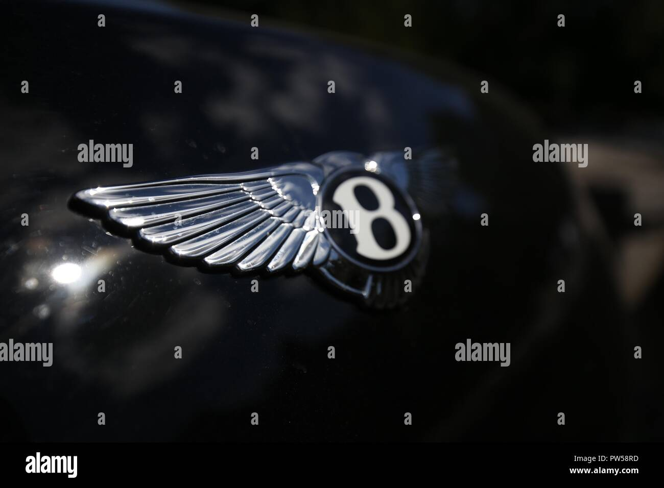 Bentley Continental GT at Château de Neuville in Gambais (78) – France. - Stock Image