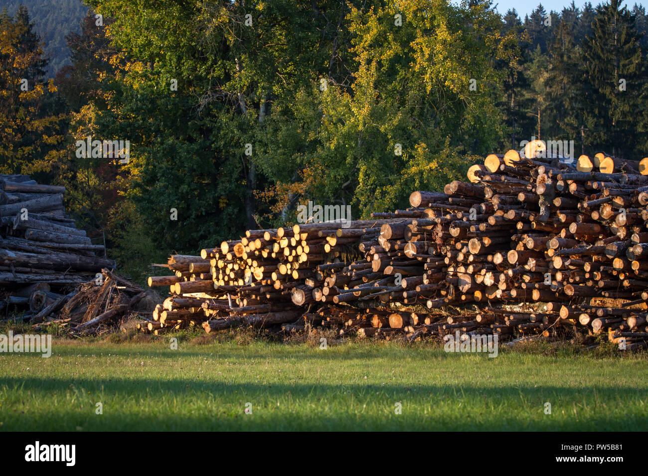 Wood stack, Waldviertel, Austria Stock Photo