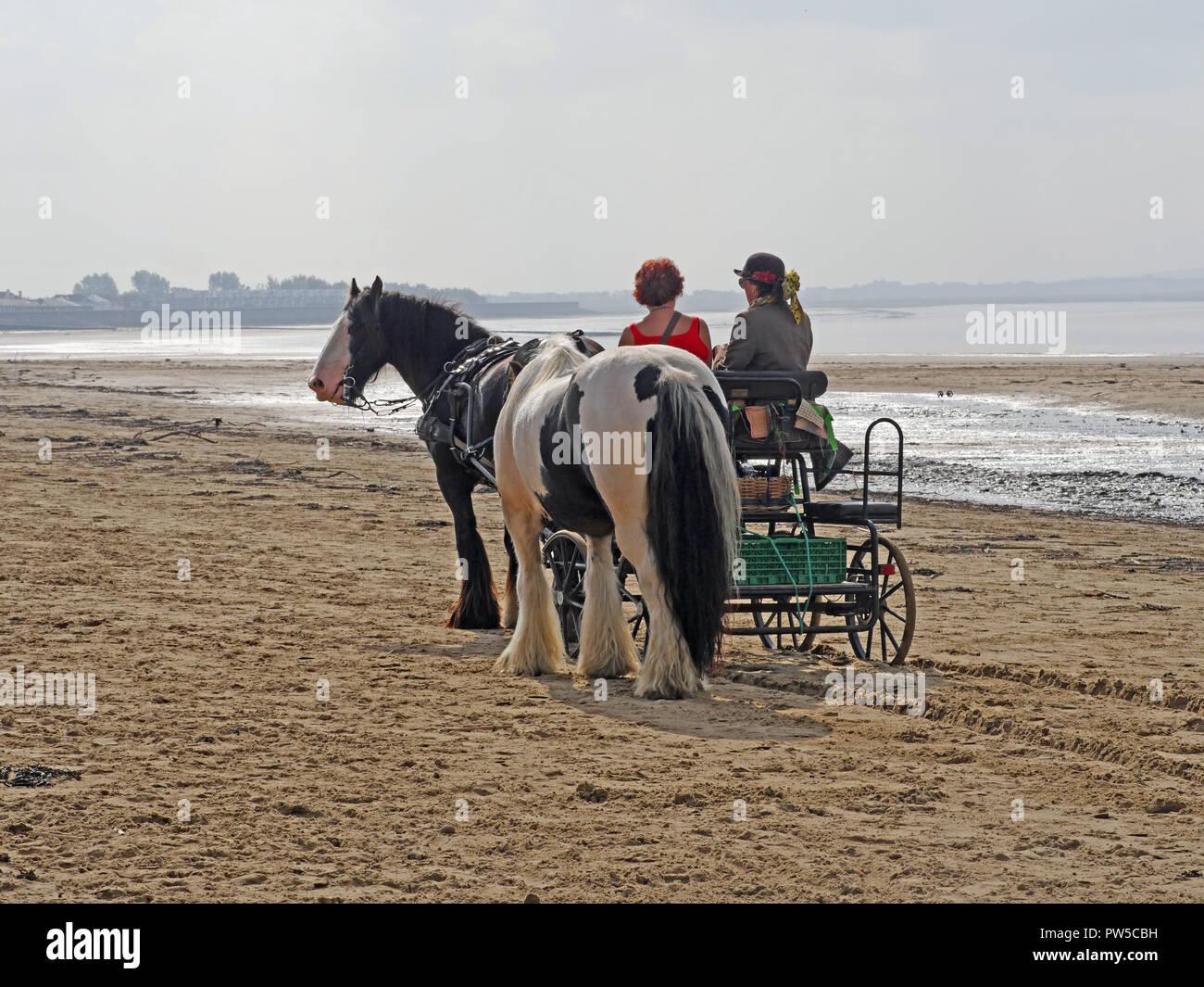 Horse-drawn Cart on Burnham on Sea beach, Bristol Channel UK - Stock Image
