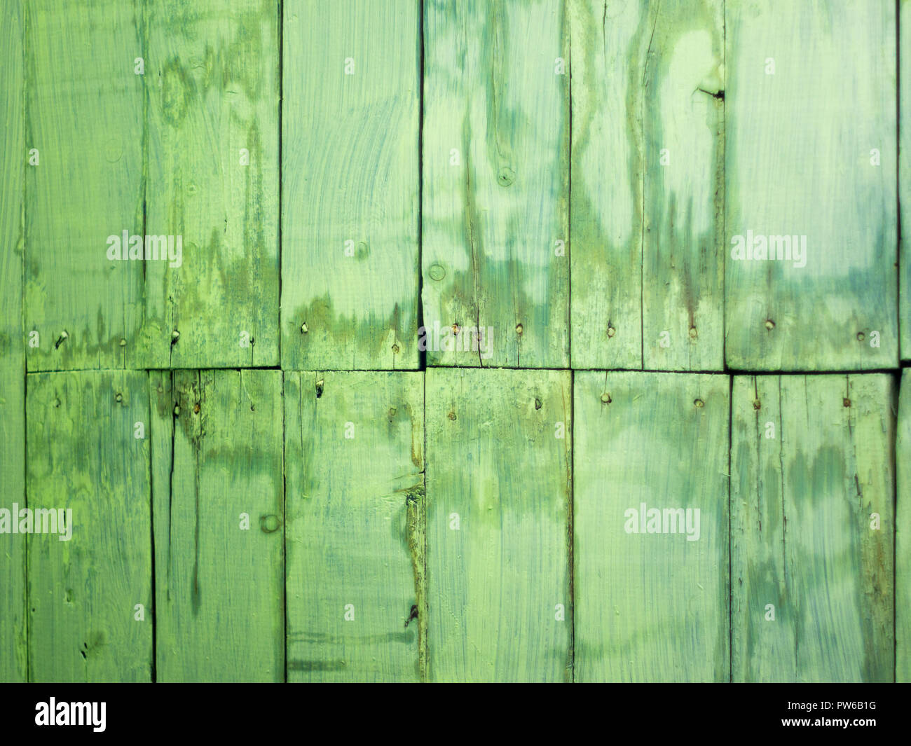 Old green painted and stained wooden planks with nail heads background texture - Stock Image