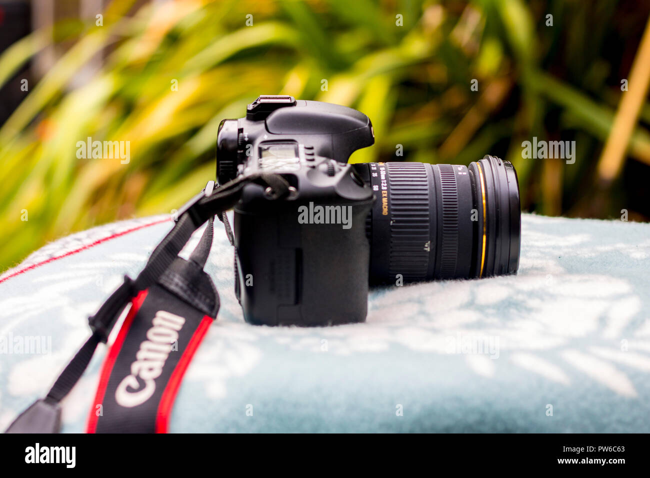 Canon Camera SLR mock-up blanket garden outdoors, photography concept, best life, lifestyle, taking photos, photographer concept, lazy afternoon - Stock Image