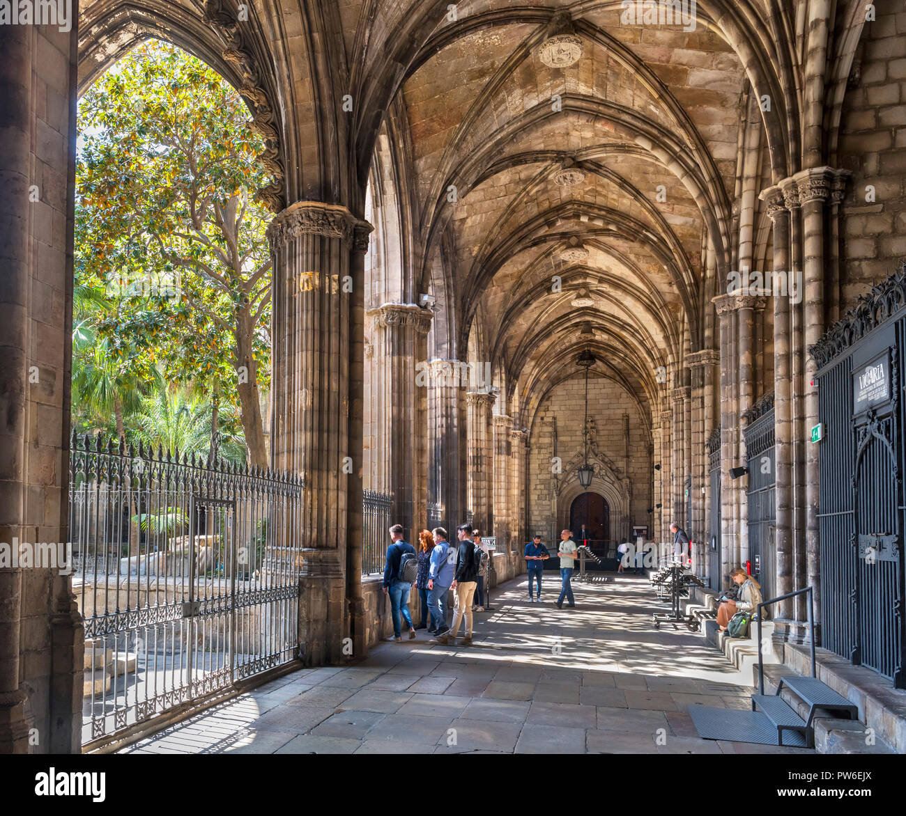 Barcelona Cathedral Cloisters In The Cathedral Of The Holy Cross And Saint Eulalia Barri Gotic Barcelona Spain Stock Photo Alamy