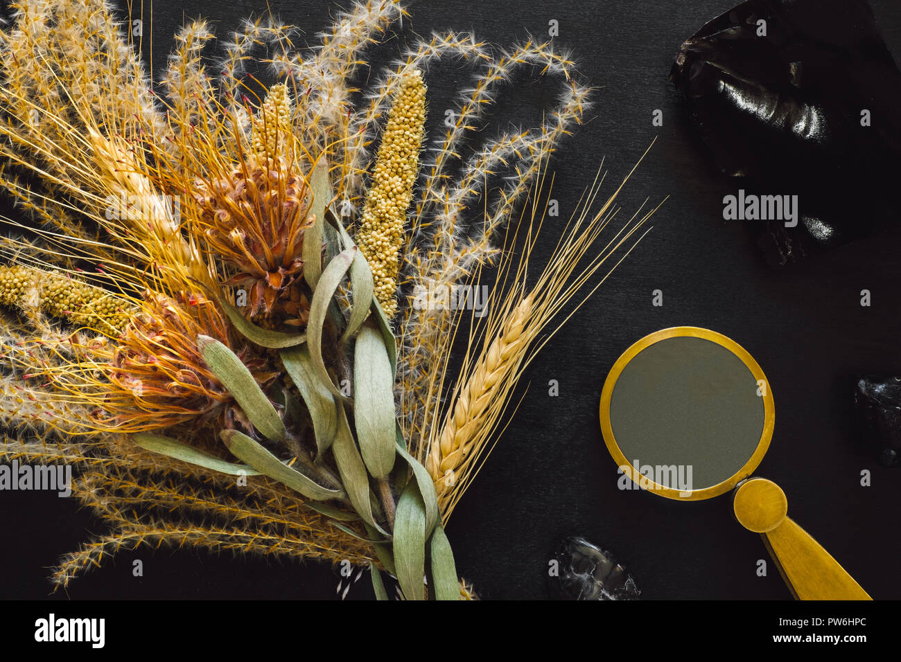 Obsidian Slice with Dried Feather Grass and Flowers and Magnifying Glass on Black Table - Stock Image