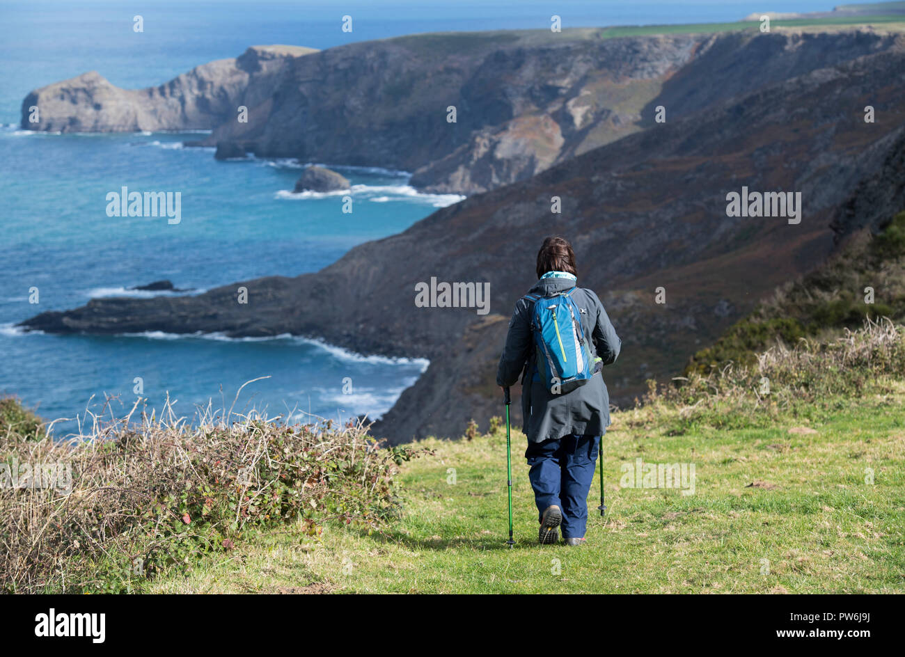Female hiker walking along the South West Coast Path between Boscastle and Crackington Haven in Cornwall, England, UK - Stock Image
