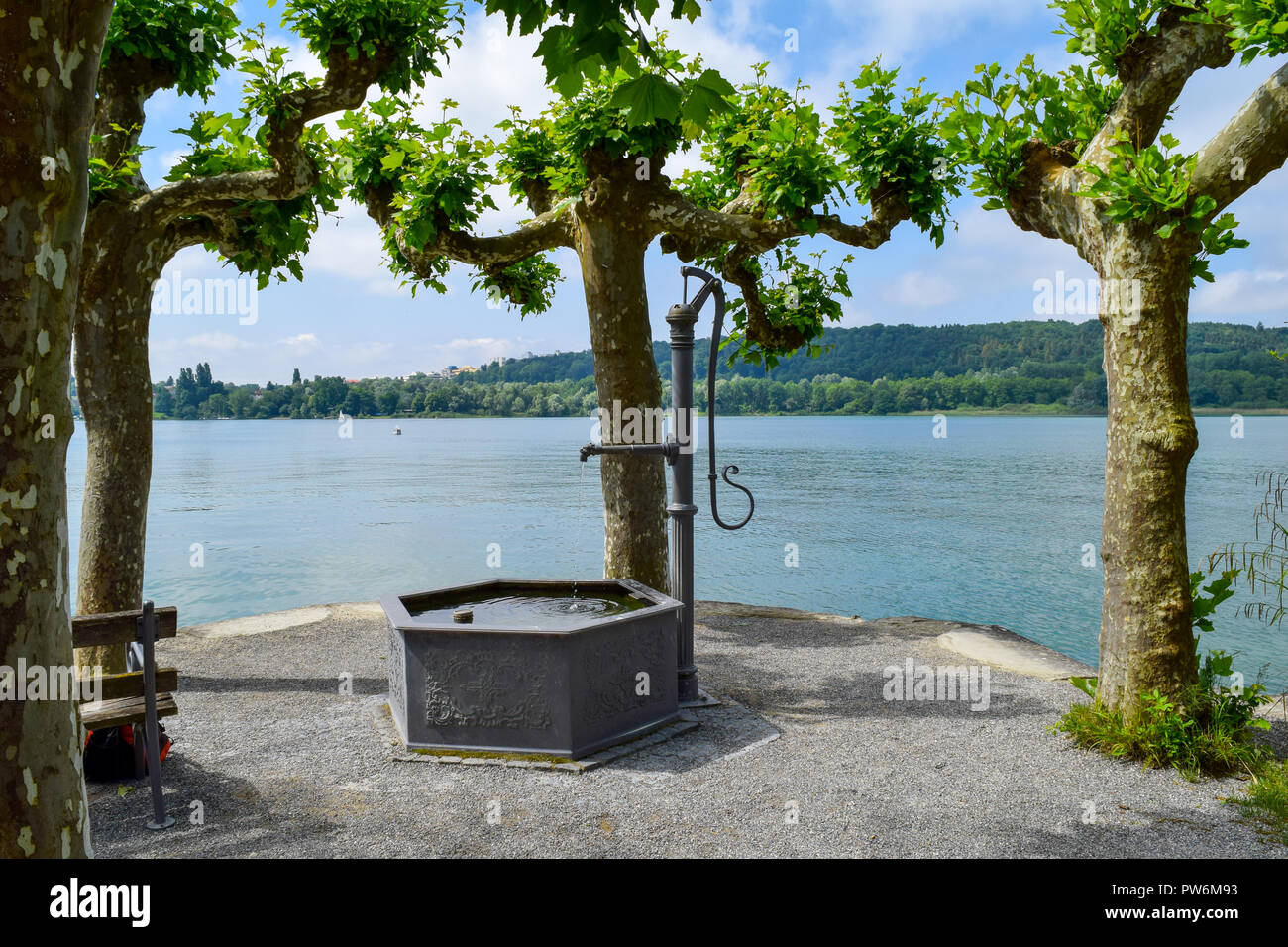 mainau island view through trees over lake constance, Bodensee, fountain in front of lake blue sky and island - Stock Image
