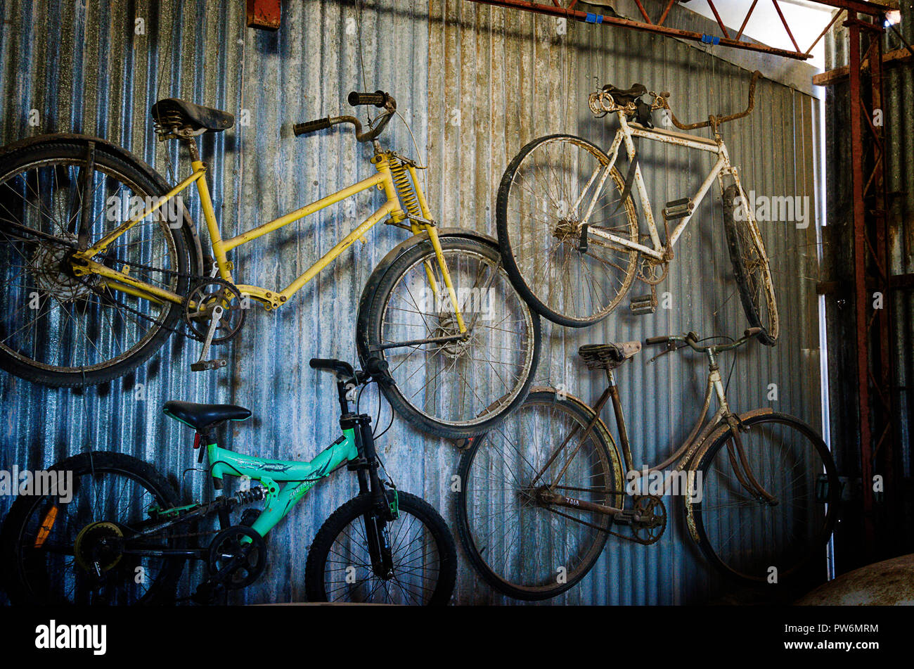 Display of old bicycles, cars and carriages at National Trust Ceduna School House Museum, Ceduna SA - Stock Image