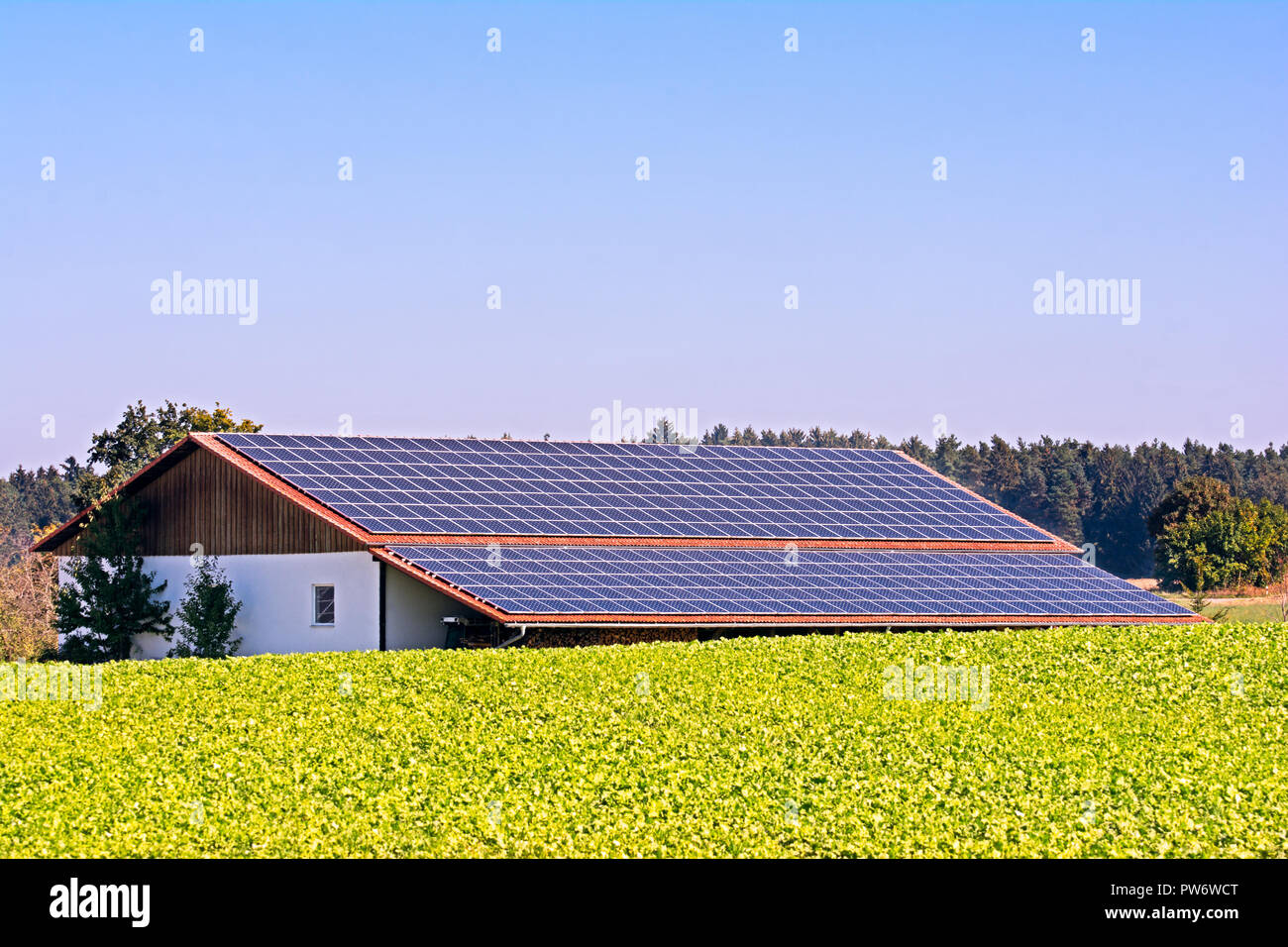 Green energy with solar collectors on the roof of an agricultural building - Stock Image