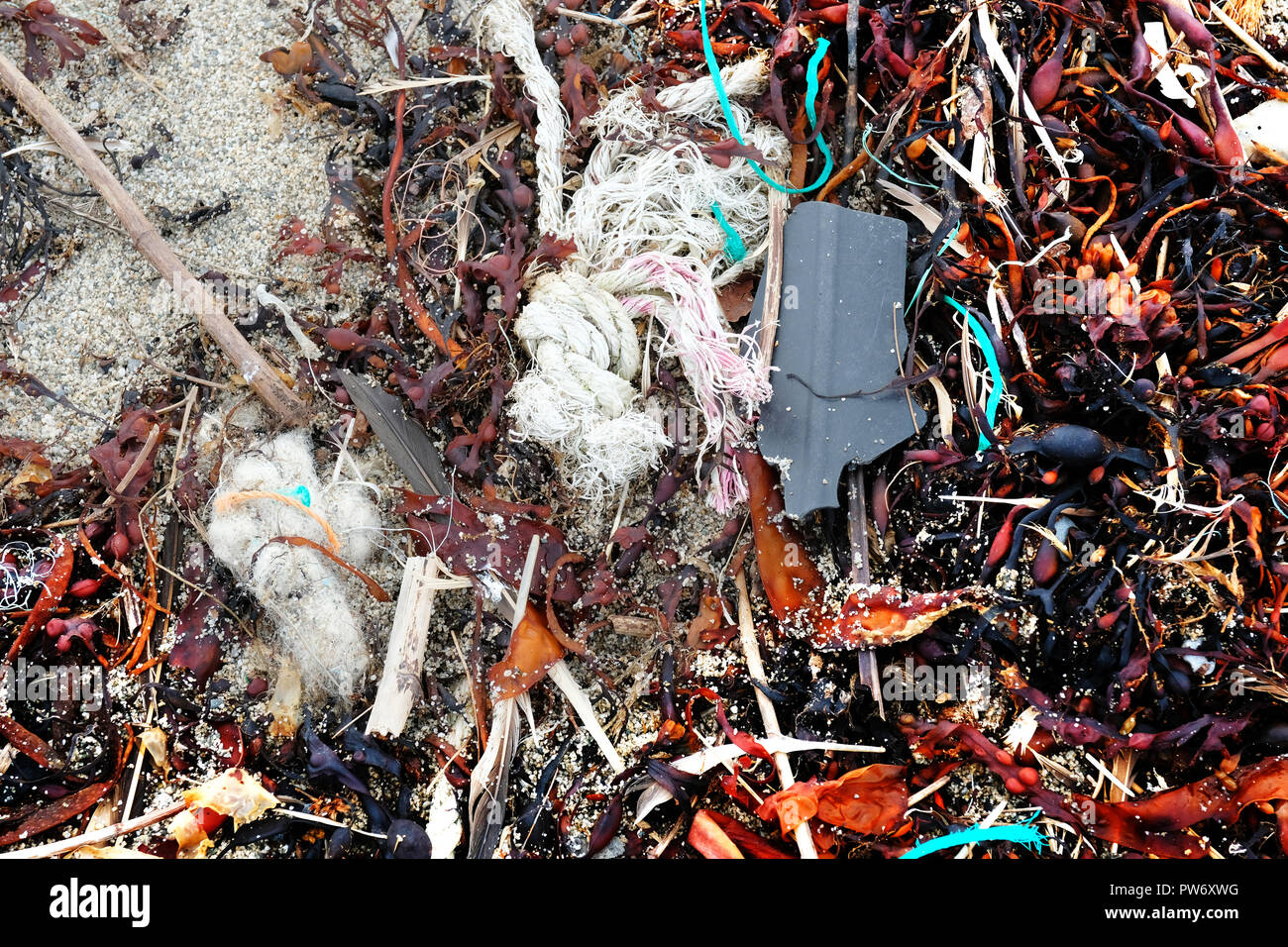 Plastic rubbish causing pollution problems on a sandy beach - John Gollop - Stock Image