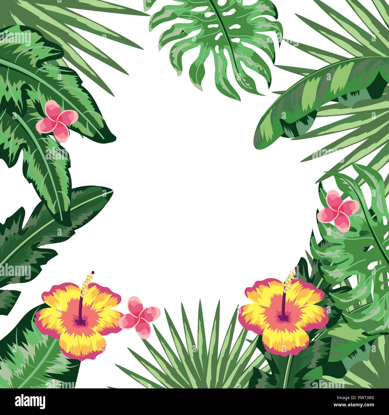 Tropical Leaves And Flowers Background Stock Vector Image Art Alamy 60pcs tropical party decorations supplies tropical palm leaves hibiscus flowers simulation beautiful summer flowers,could use it for hawaiian leis, tropical hawaiian flower headband or hair. https www alamy com tropical leaves and flowers background image222047476 html