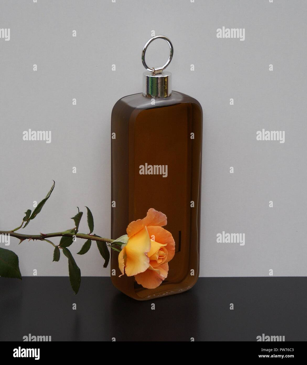 Lagerfeld, men's fragrance, large perfume bottle decorated with an English rose - Stock Image