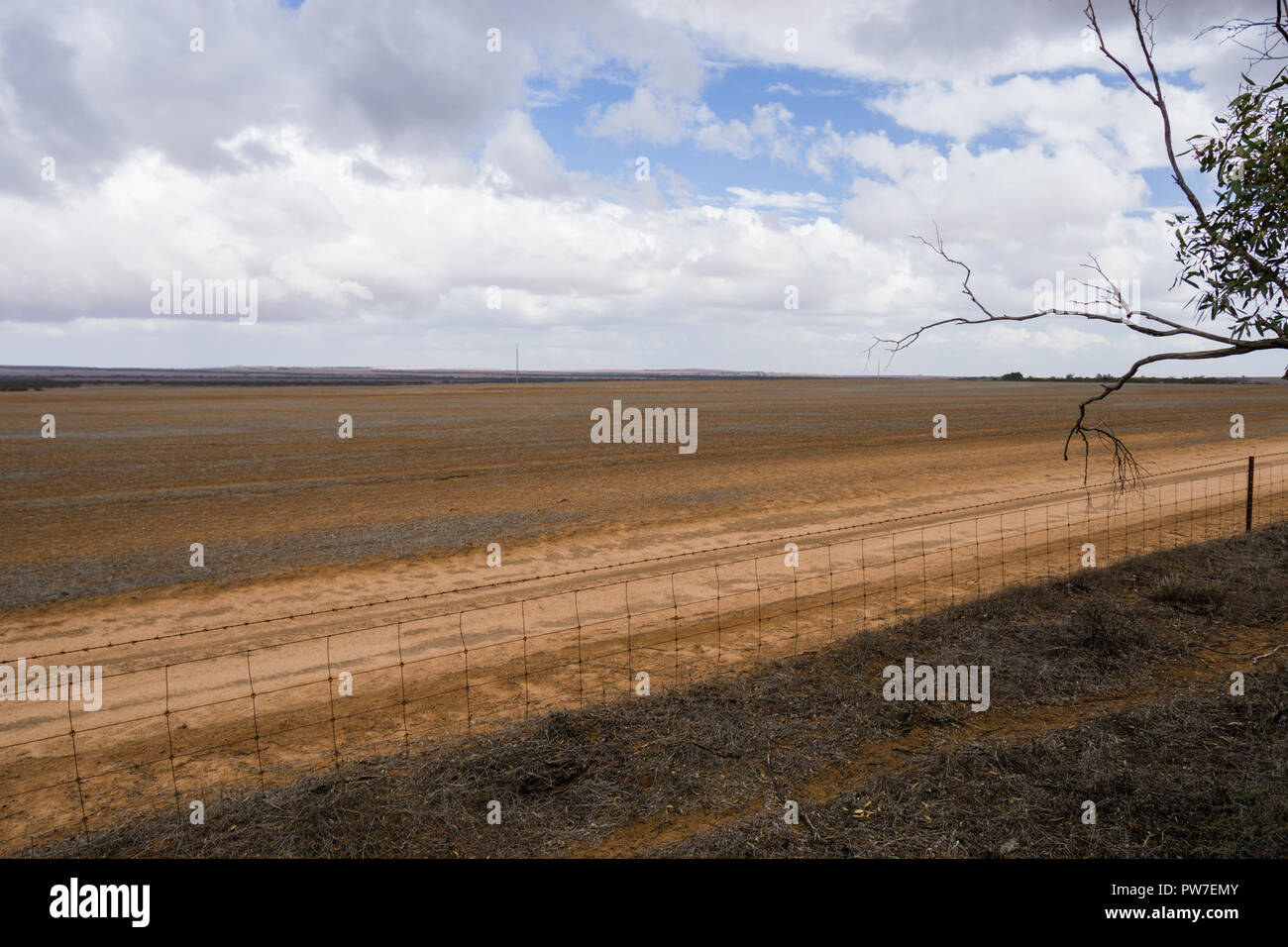 Bare paddock with wire fence and dirt track, Eyre Peninsular South Australia - Stock Image