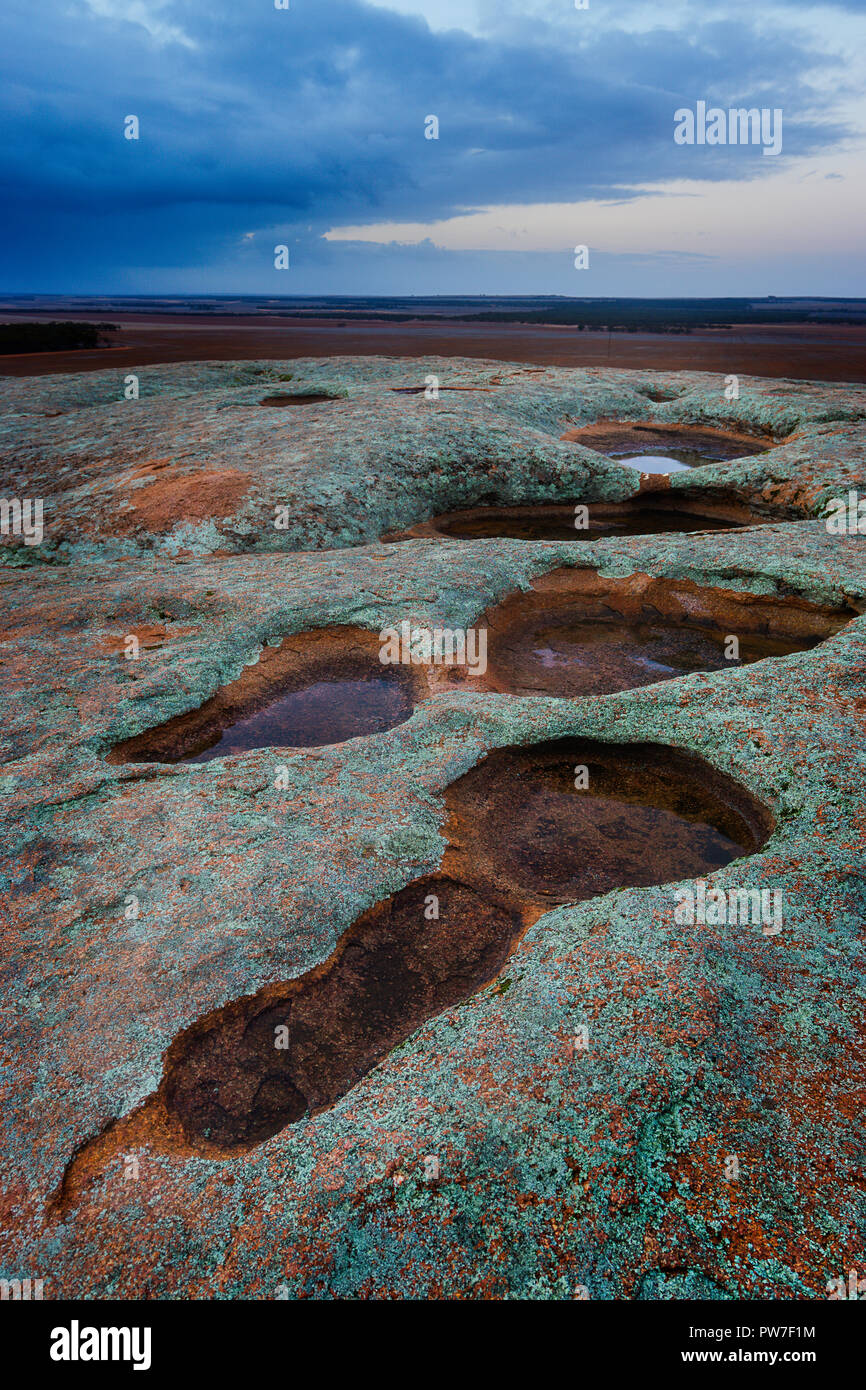 Shallow rock pools aka as gnamma holes by the aboriginals filled with water after recent rain on top of Pildappa Rock, Eyre Peninsula South Australia Stock Photo