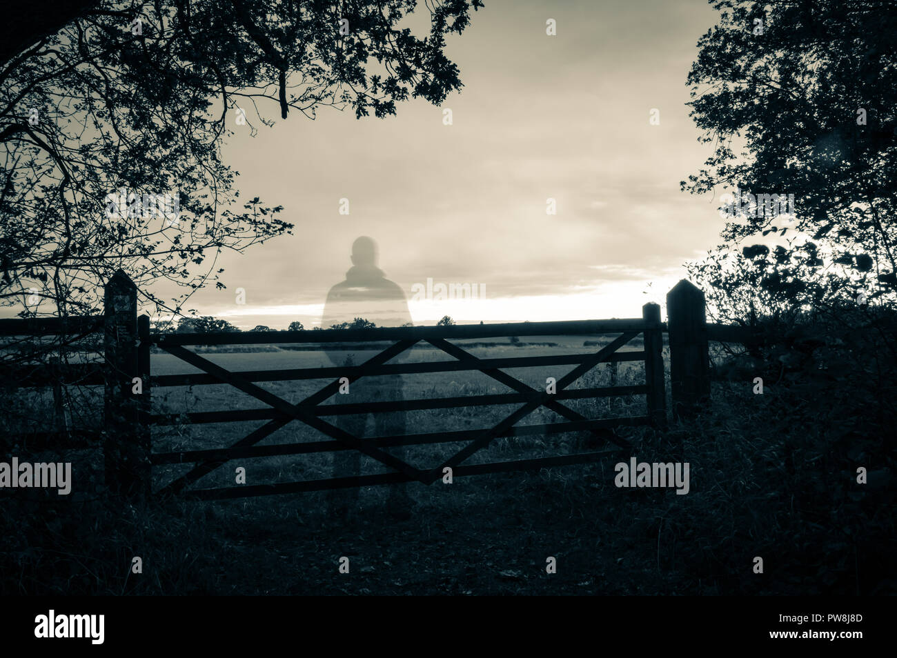 A ghostly transparent figure standing by a gate looking out on countryside. With a grunge vintage duo toned edit - Stock Image