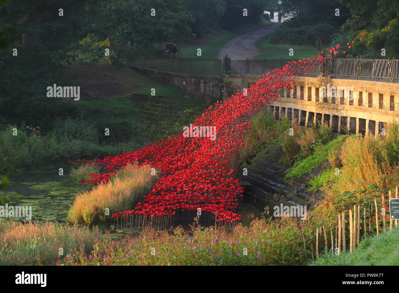 Poppies Wave and Weeping Window Sculpture at Yorkshire Sculpture Park - Stock Image