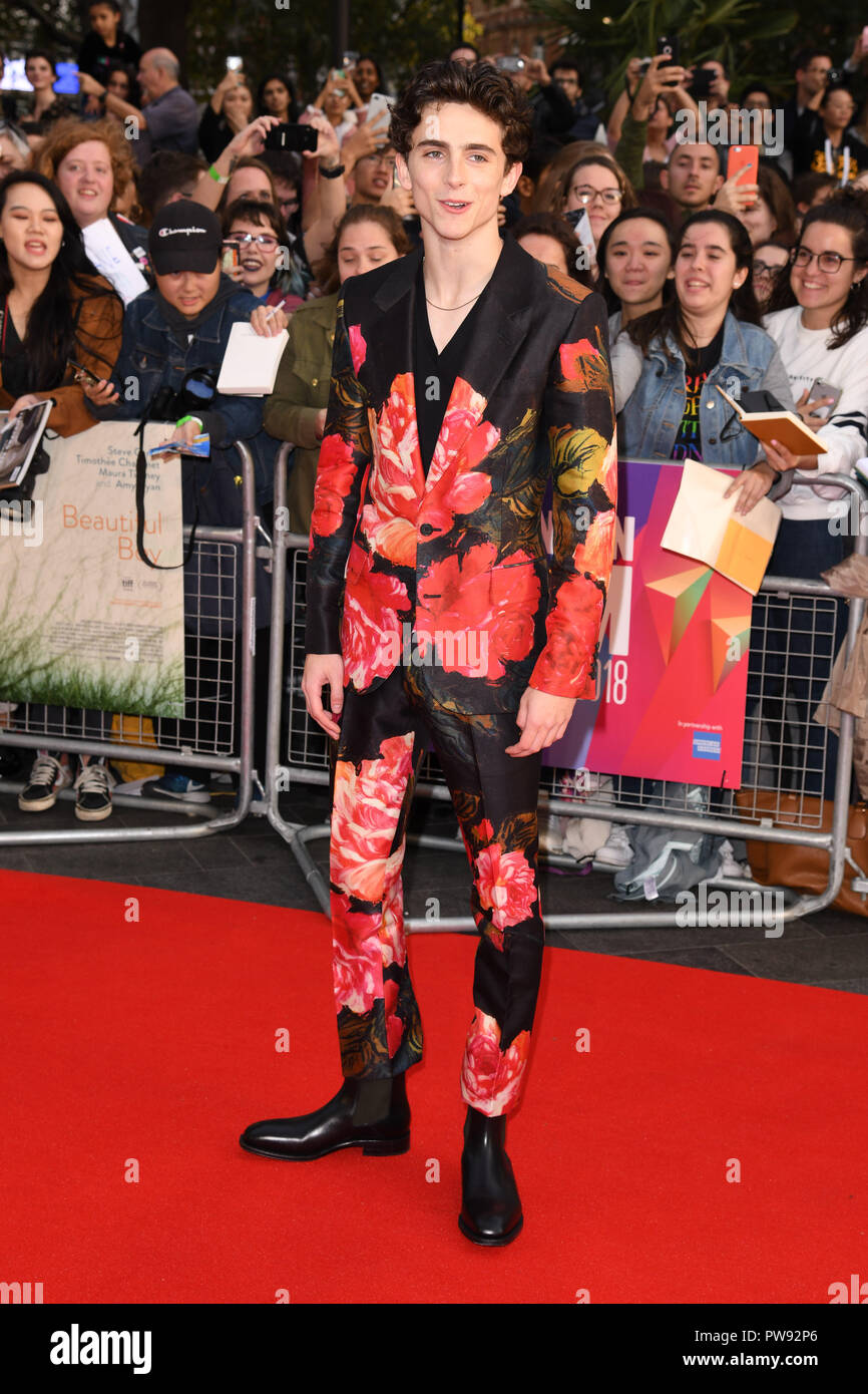 LONDON, UK. October 13, 2018: Timothee Chalamet at the London Film Festival screening of 'Beautiful Boy' at the Cineworld Leicester Square, London. Picture: Steve Vas/Featureflash Credit: Paul Smith/Alamy Live News - Stock Image