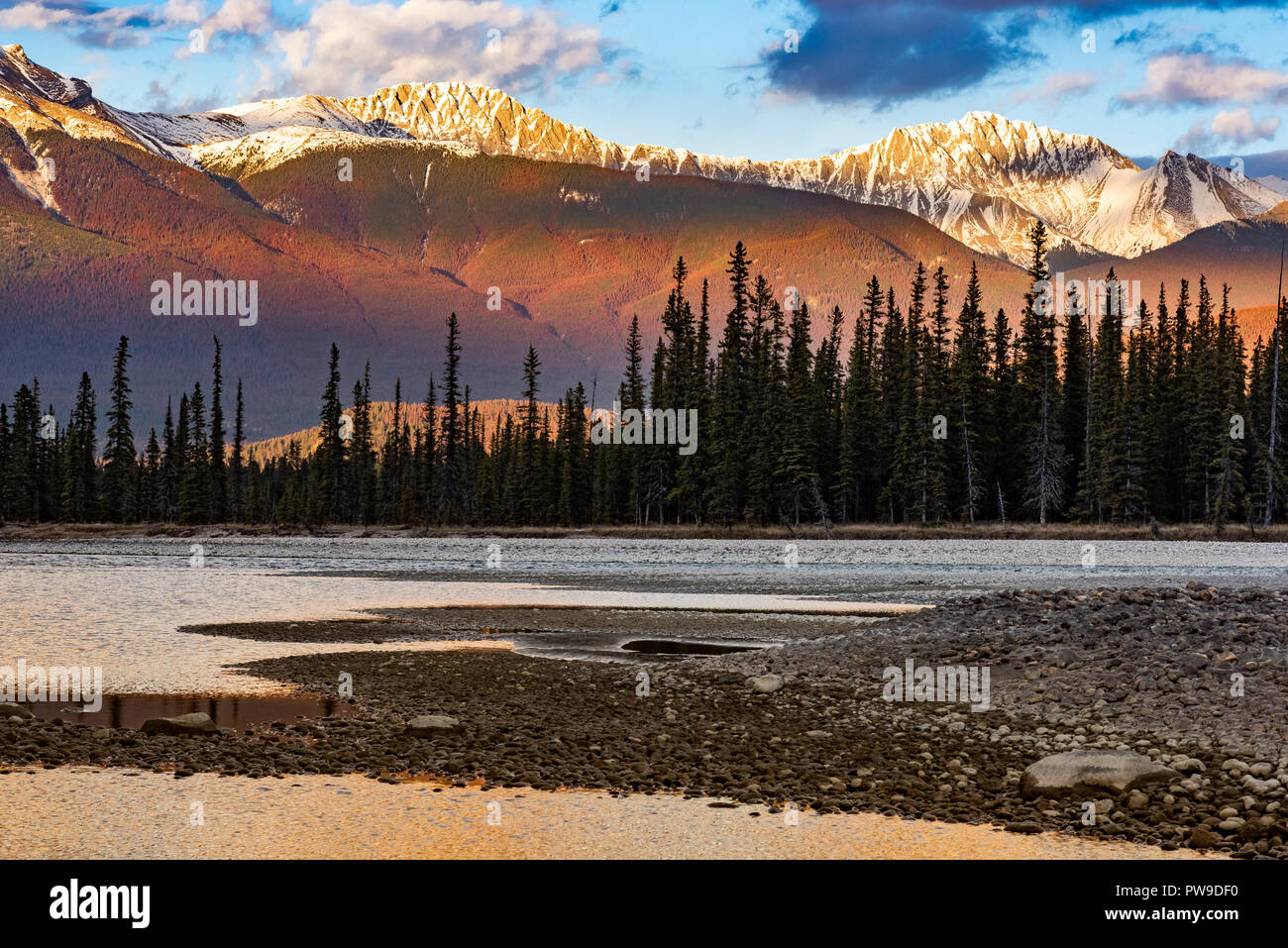 Athabasca River Valley, Jasper National Park, Alberta, Canada - Stock Image