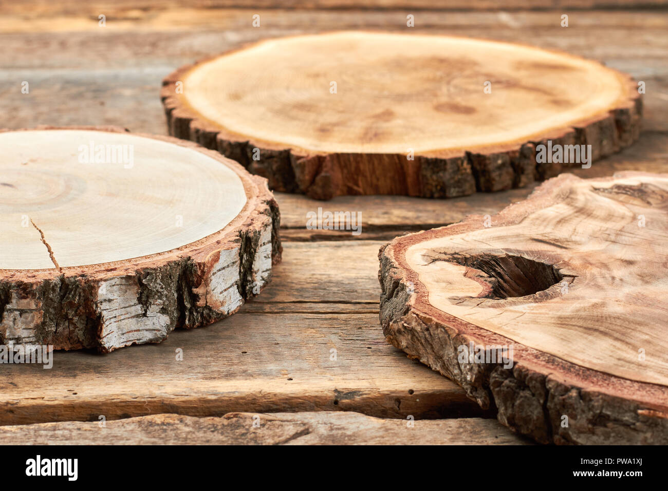 Natural Wood Slices Rustic Wooden Discs Set Of Wooden