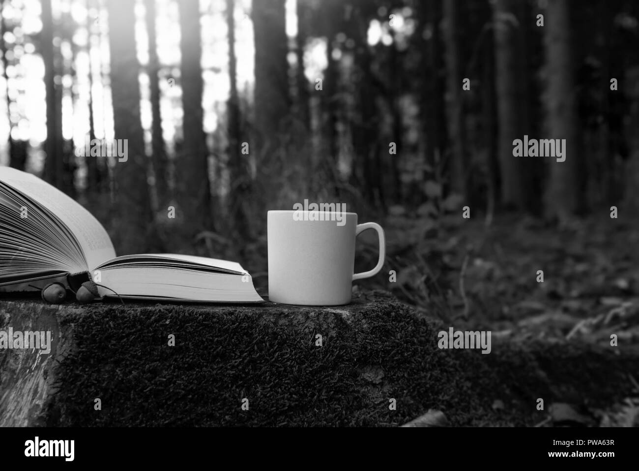 Lifestyle image with a cup of steamy hot coffee and an open book, on a cut tree root, outside in a forest, on a sunny day. Leisure in nature. - Stock Image