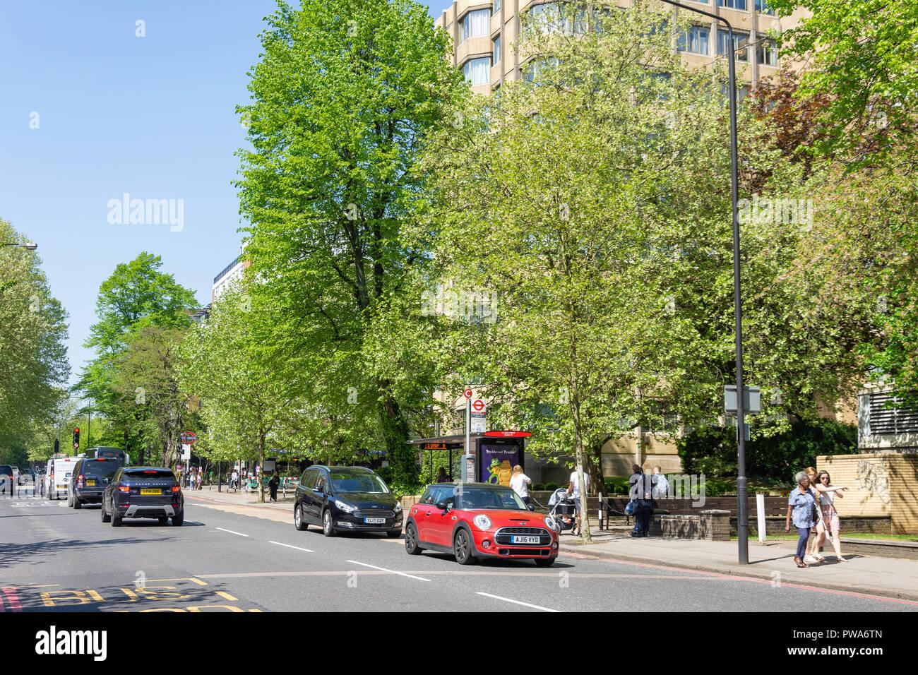 Wellington Road, St John's Wood, City of Westminster, Greater London, England, United Kingdom - Stock Image