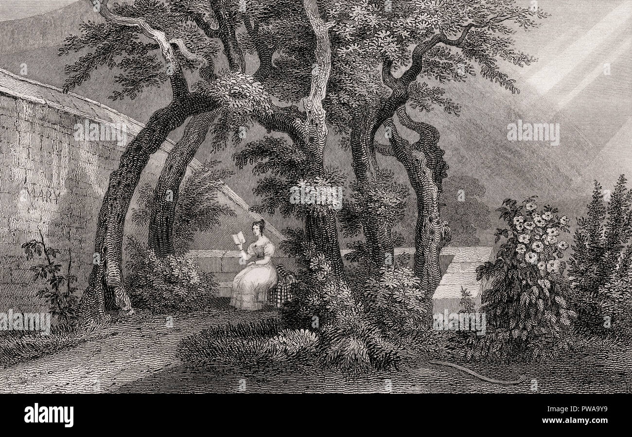 An Arbour in Regent Murray's Garden, or Queen Mary's Bower, Canongate, Edinburgh, Scotland, 19th century, from Modern Athens by Th. H. Shepherd - Stock Image