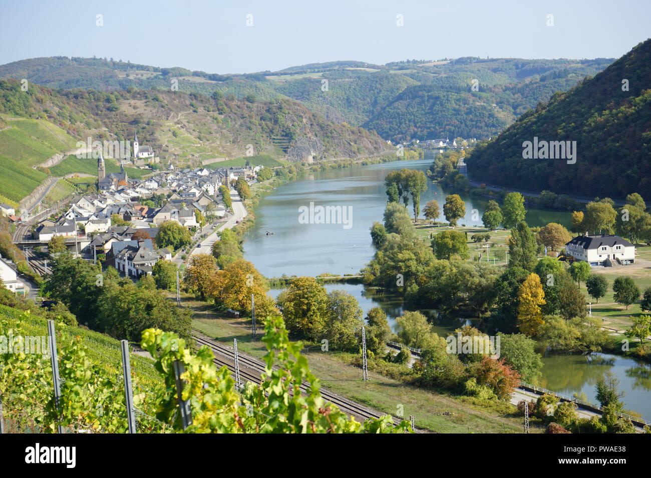 Blick auf Hatzenport, Moselsteig, Terrassenmosel, Moseltal, Mosel, Rheinland Pfalz, Deutschland - Stock Image