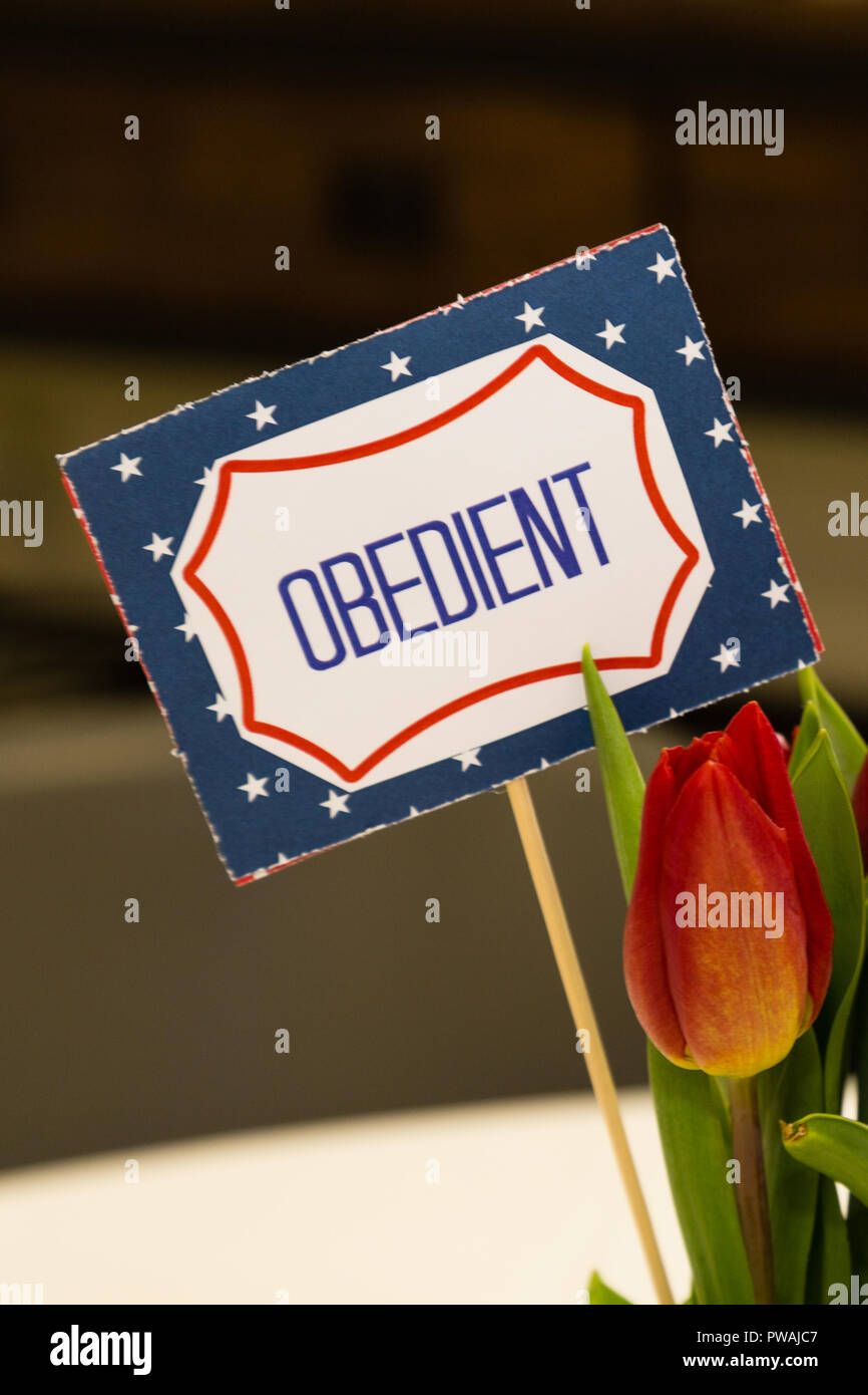 A Scout is obedient sign with flowers - Stock Image
