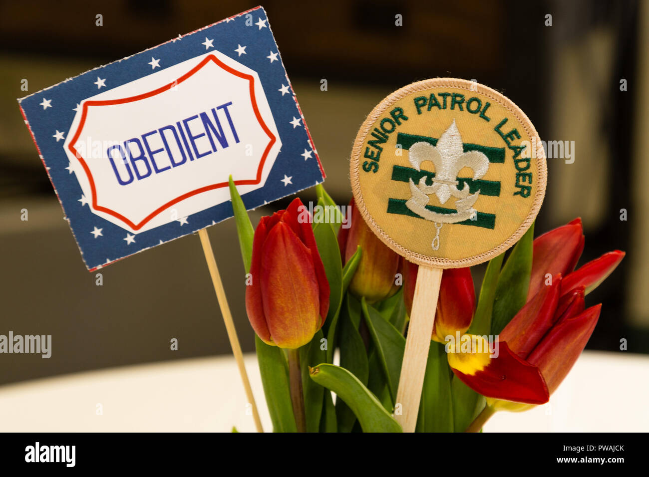A Scout Senior Patrol Leader is obedient sign and patch with flowers - Stock Image