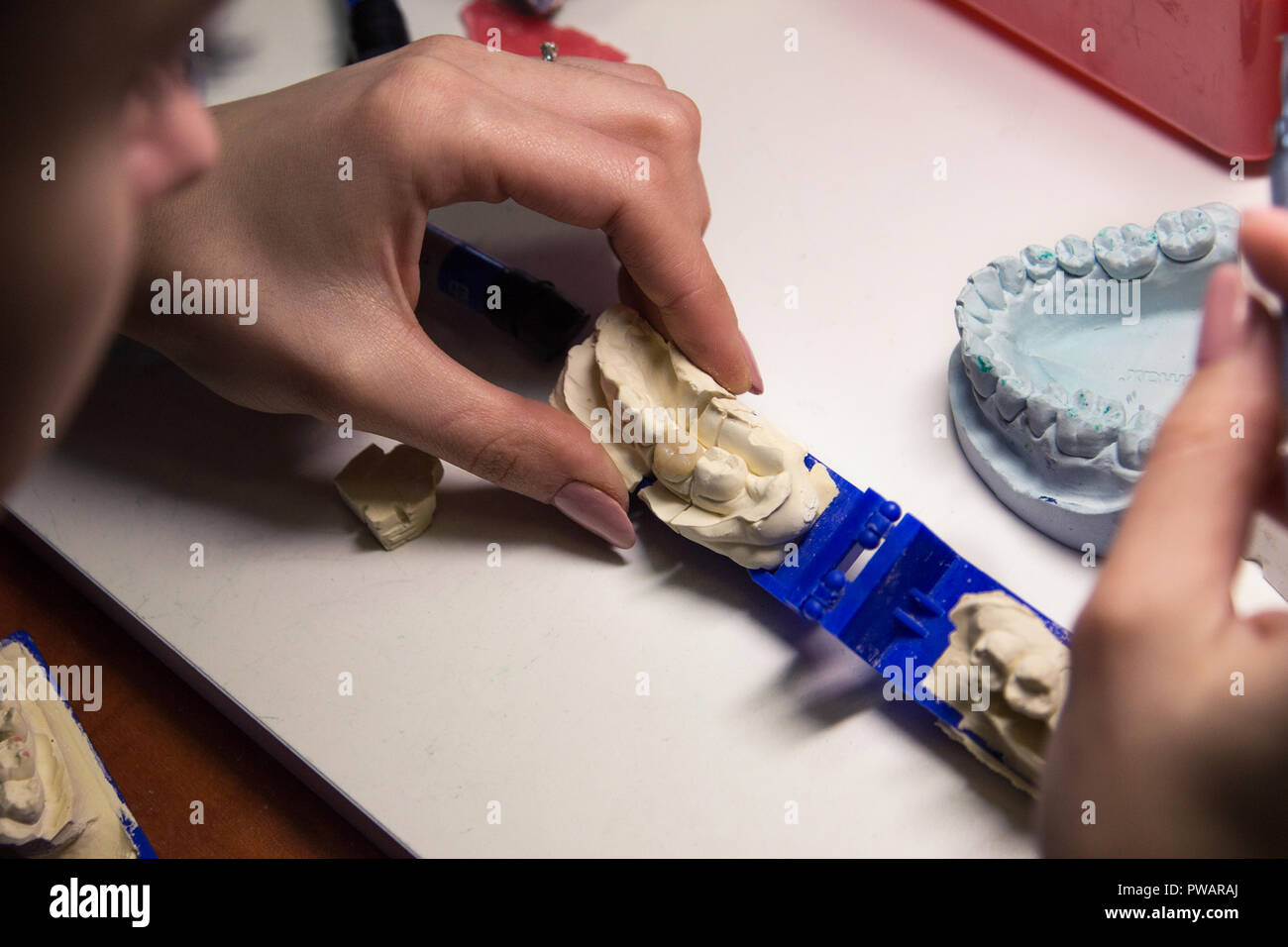 Dental prosthesis, artificial tooth, prosthetic, hands working on the denture - Stock Image