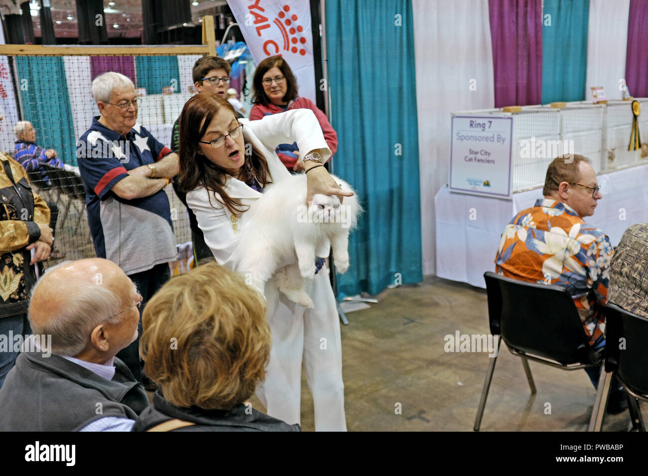 Cleveland, Ohio, USA, 15th Oct, 2018.  A judge explains to a crowd her assessment of a white Persian and why she was chosen as the winner of one of the competitions at the 2018 Cat Fanciers' Association International Cat Show in Cleveland, Ohio, USA.  The pedigreed cat show is the largest of its type in the US and operates from an 'open-style' cat judging model in which the owner of the feline, and spectators, watch the competition.  Credit: Mark Kanning/Alamy Live News. - Stock Image