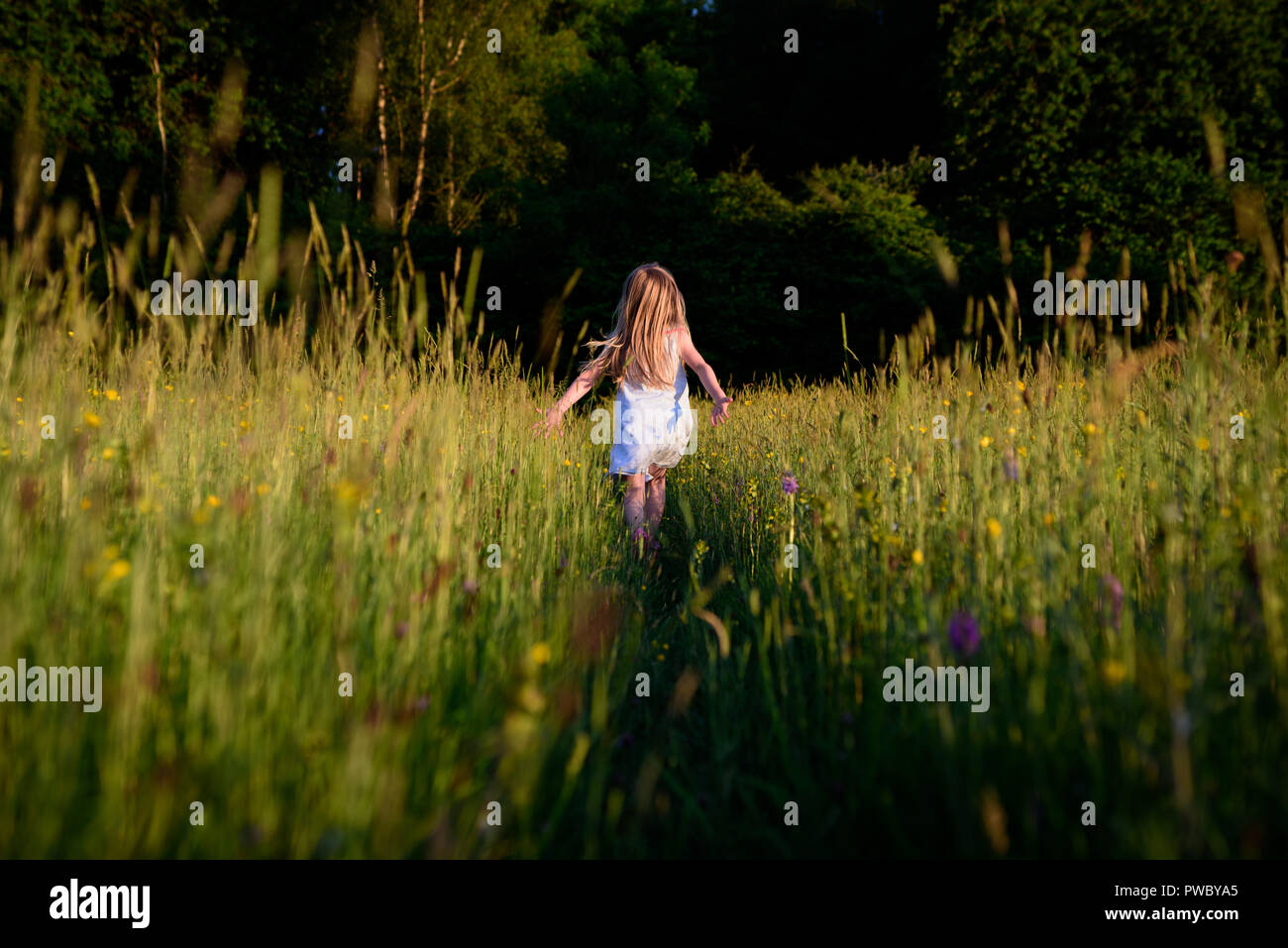 Young girl running away, through wild flower meadow, towards woodland. - Stock Image
